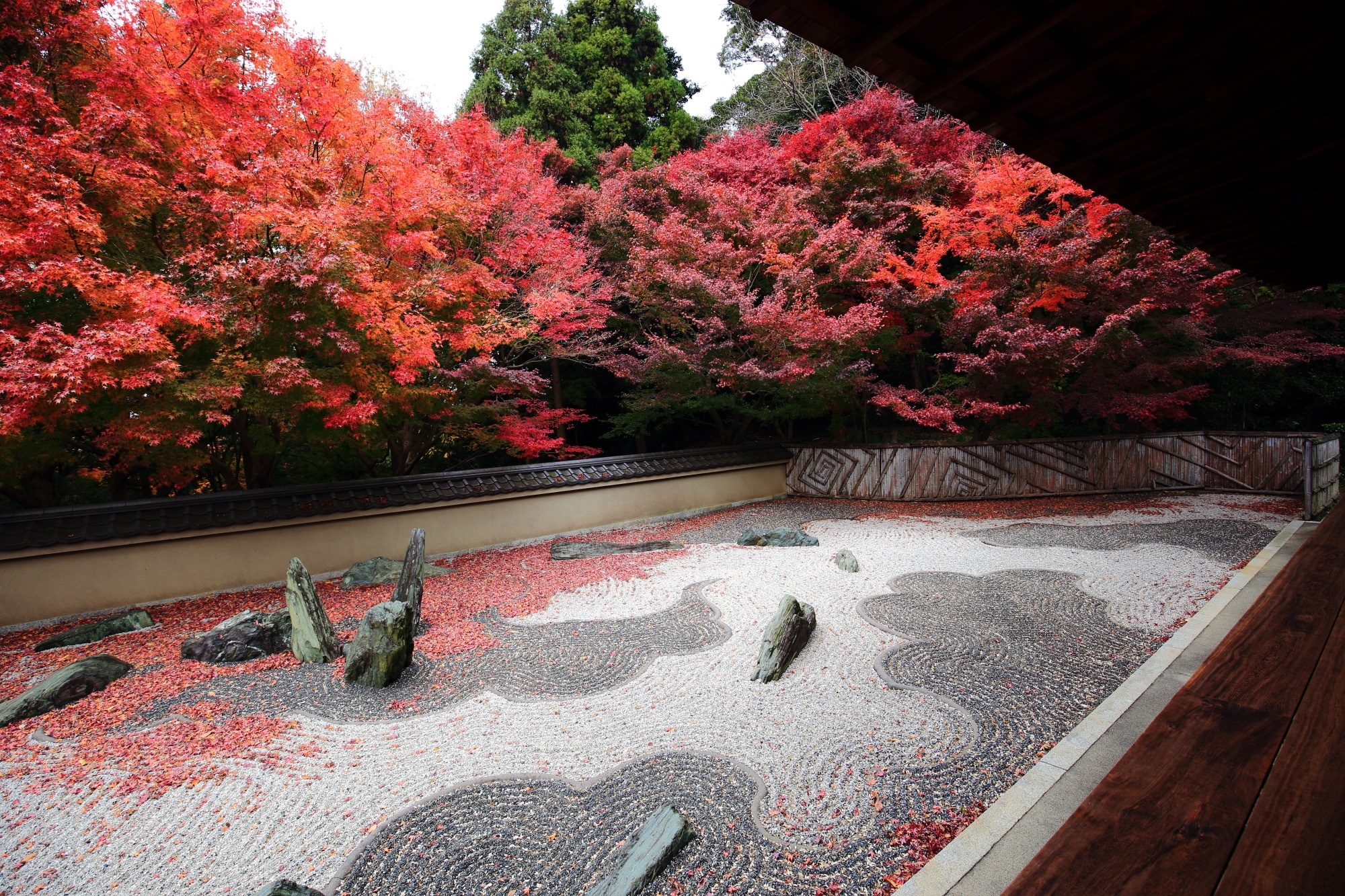 美しい紅葉につつまれた東福寺塔頭の龍吟庵の枯山水の西庭(龍の庭)