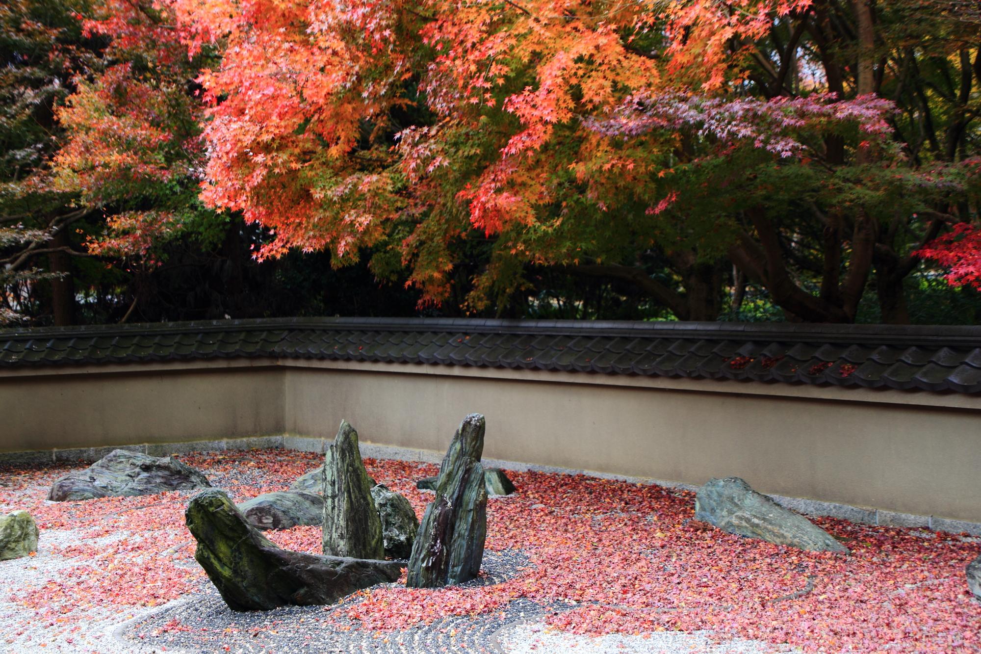 龍の庭 紅葉 見ごろ 方丈西庭 龍吟庵
