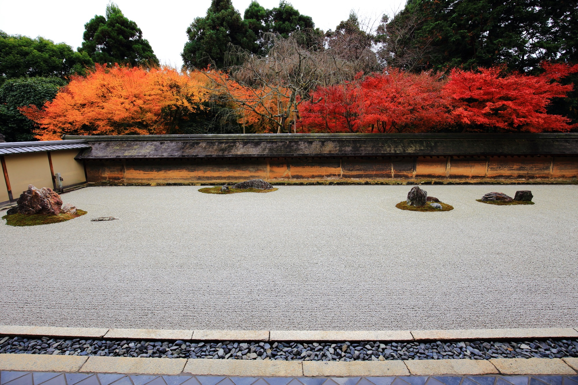 何時間でも見ていられそうな龍安寺石庭の紅葉