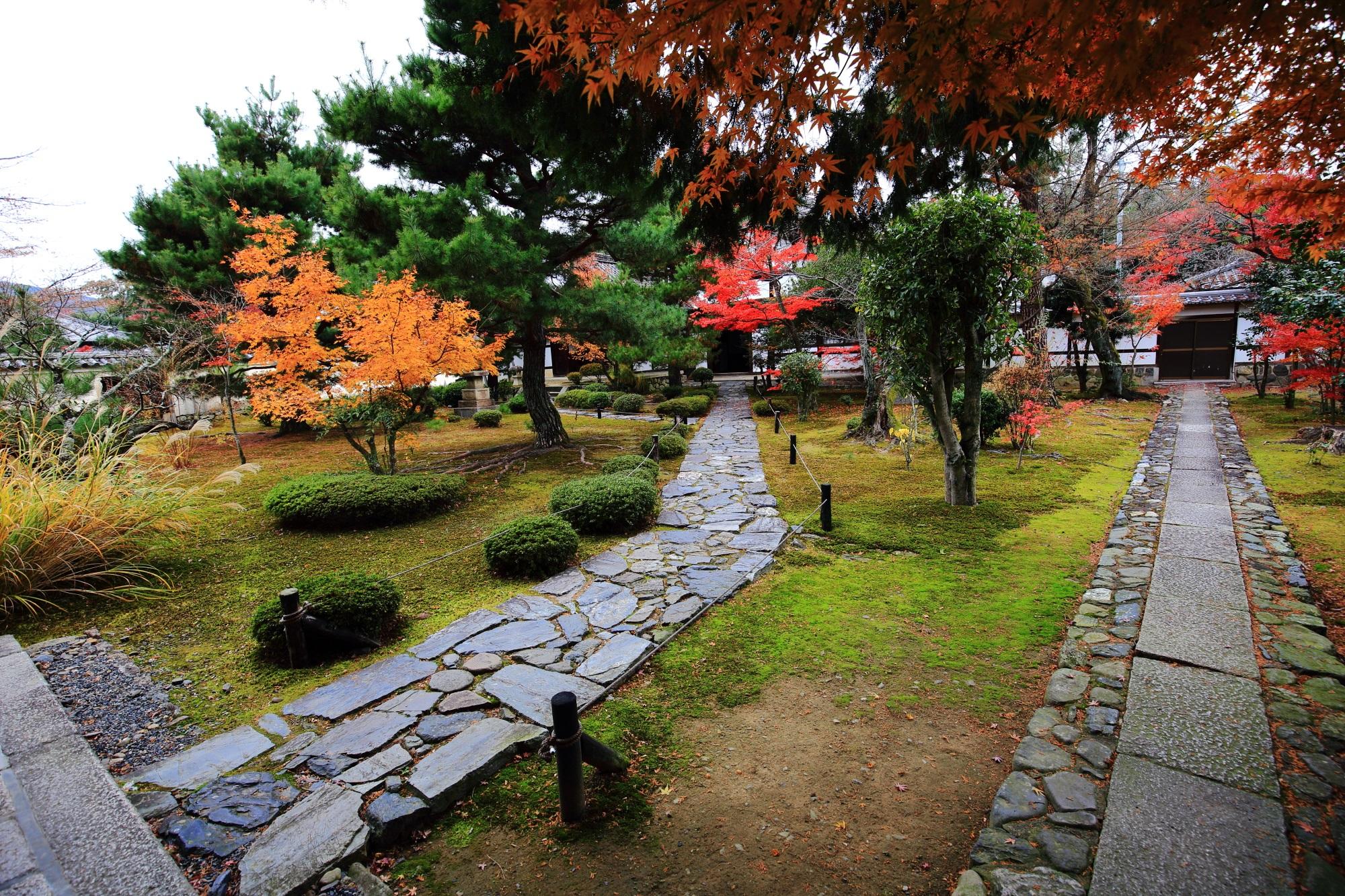 鹿王院の庫裡前の見ごろの紅葉