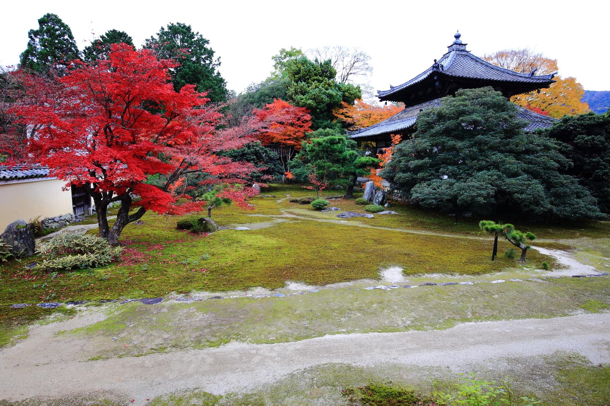 鹿王院(ろくおういん)の本庭の舎利殿と見ごろの鮮やかな紅葉