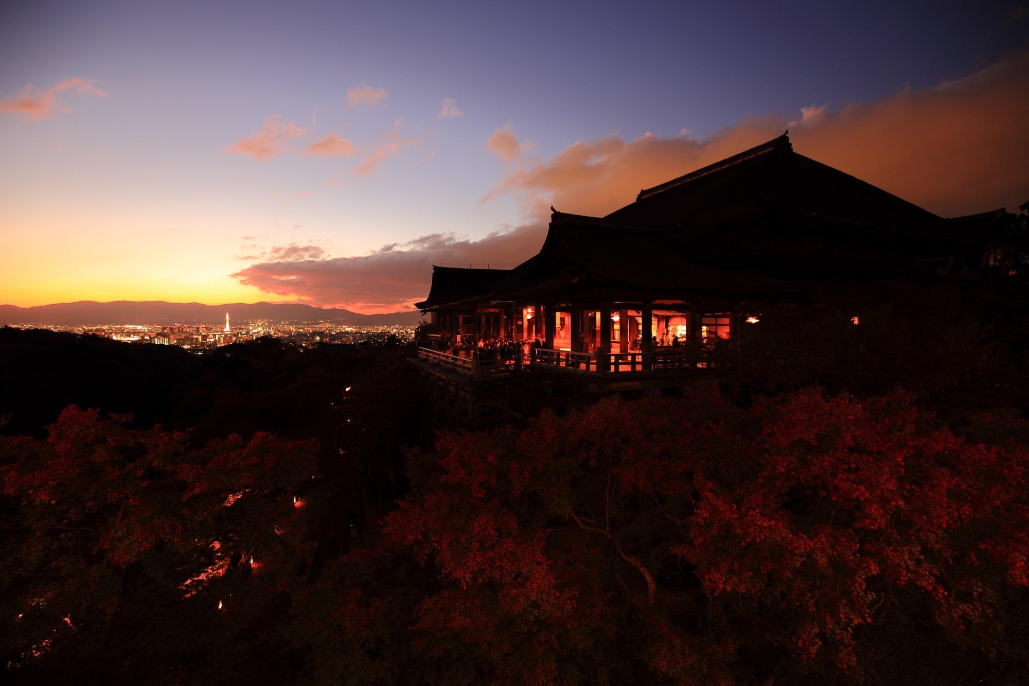 夕焼けの清水寺の見ごろの美しい紅葉