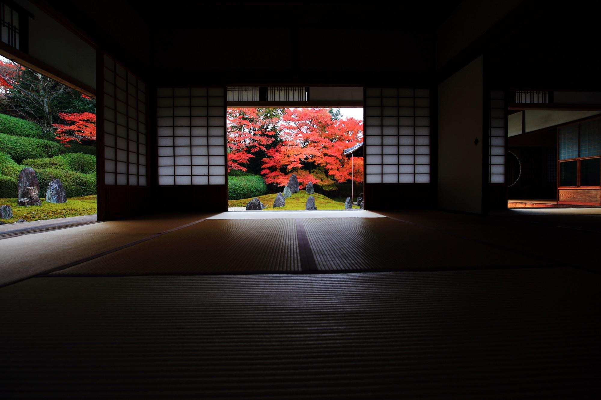 もみじの名所の光明院の書院から眺める波心庭の見事な紅葉
