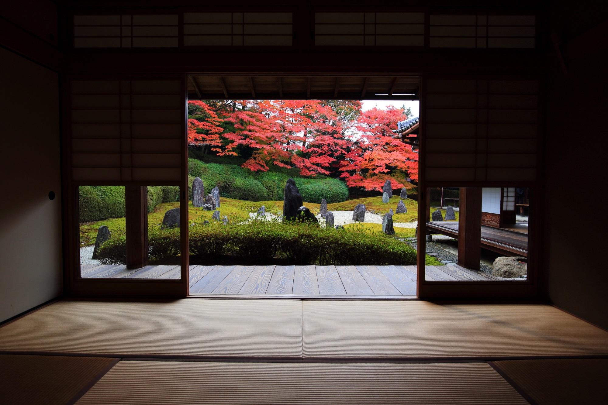 茶室「観庭楼」から眺めた波心庭と紅葉