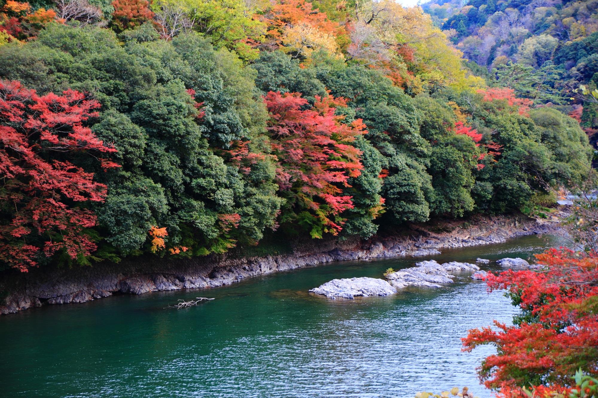 宇治川の美しい川と見ごろの鮮やかな紅葉