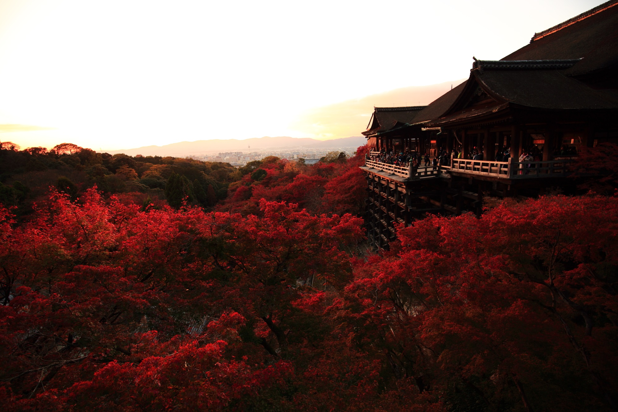 夕焼けと紅葉につつまれた清水寺