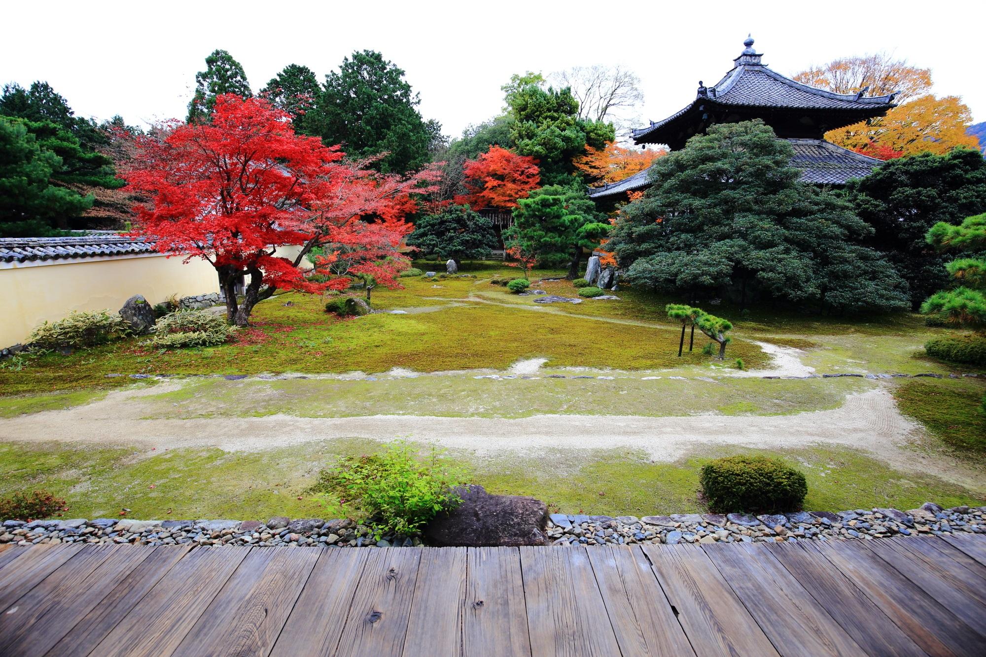 見ごろの紅葉に染まった嵐山の鹿王院の本庭