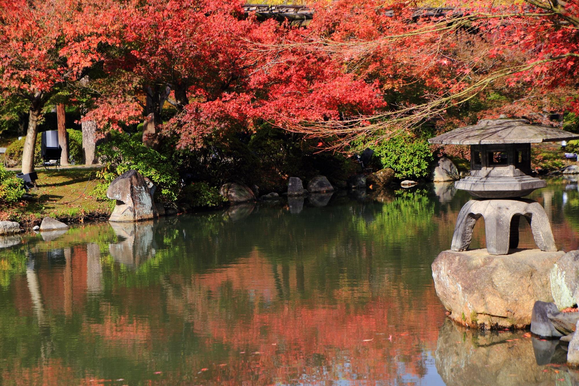 東寺の瓢箪池と灯籠と見ごろの鮮やかな紅葉