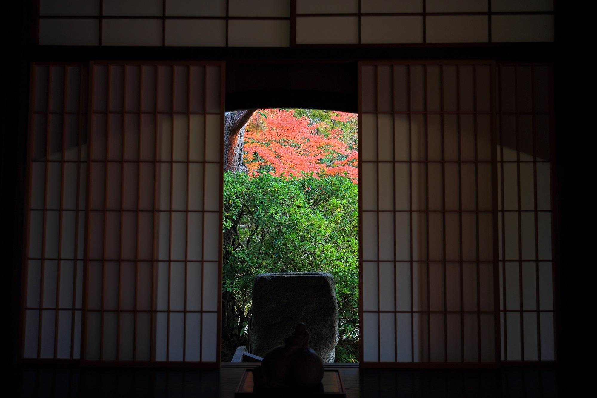 青蓮院の見ごろの優美な紅葉