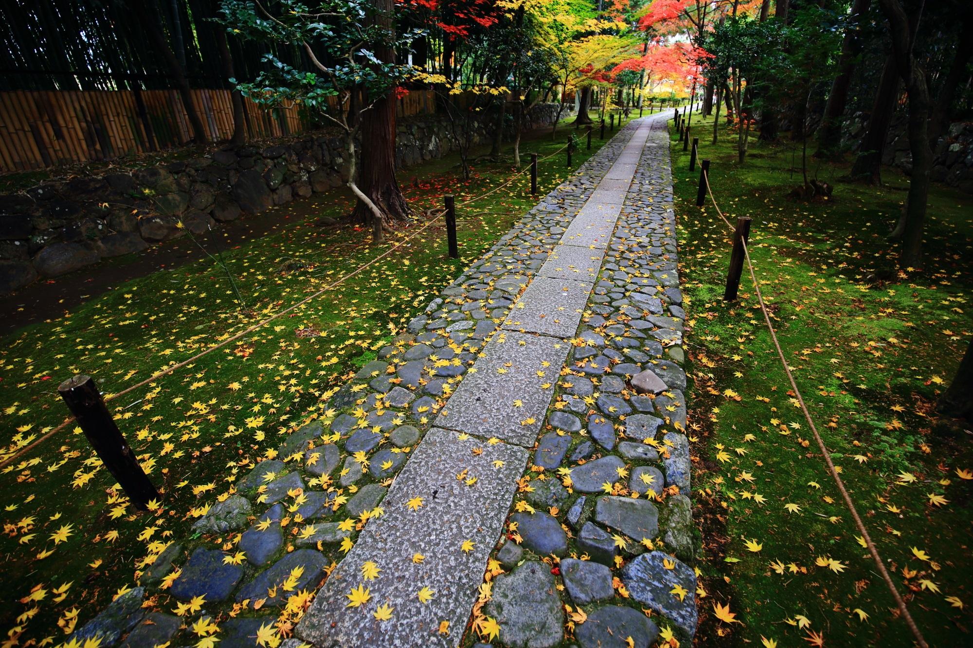 嵐山ろうおういんの参道の優美な紅葉と散りもみじ