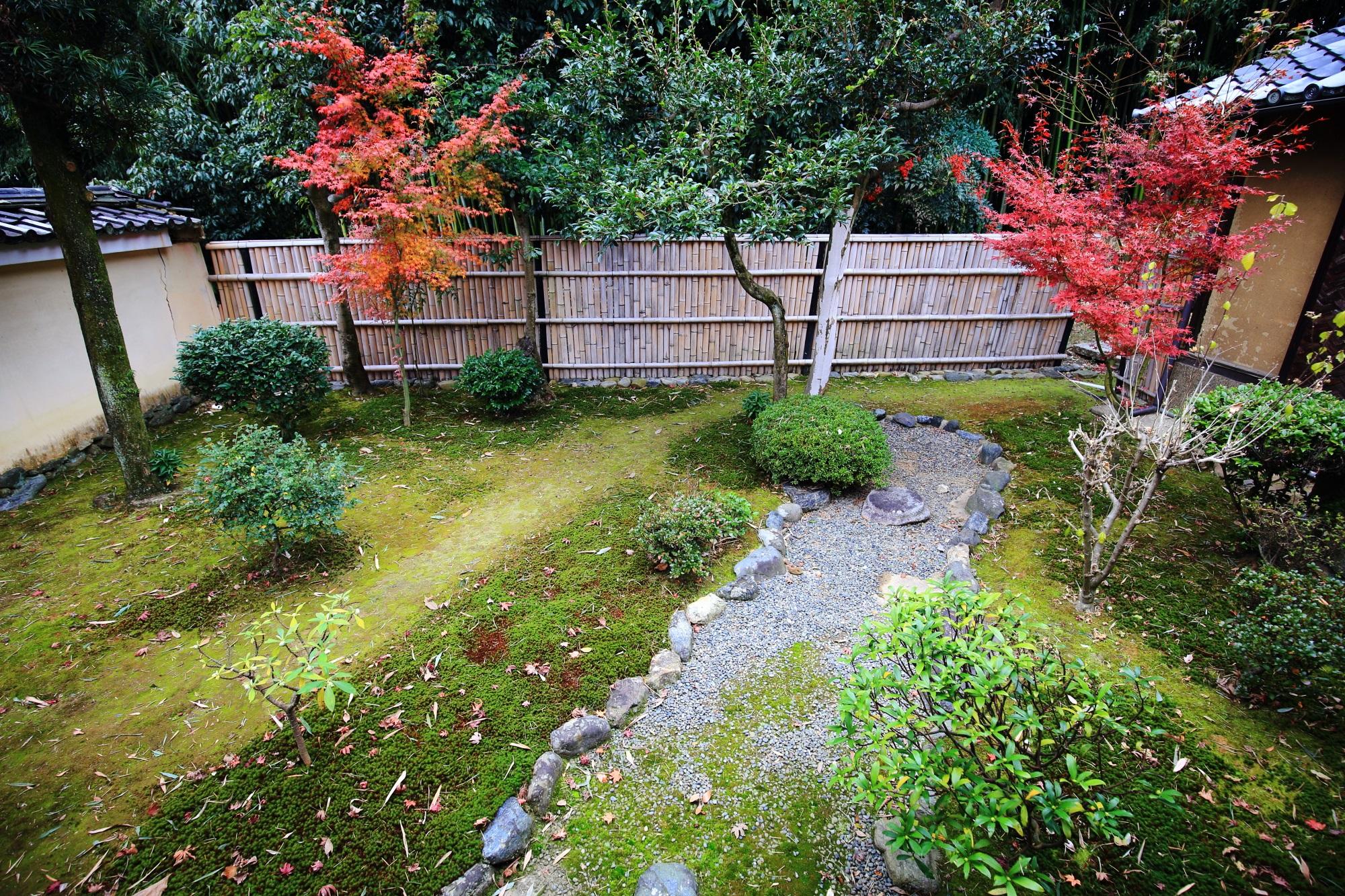 鹿王院の茶室付近の紅葉と苔