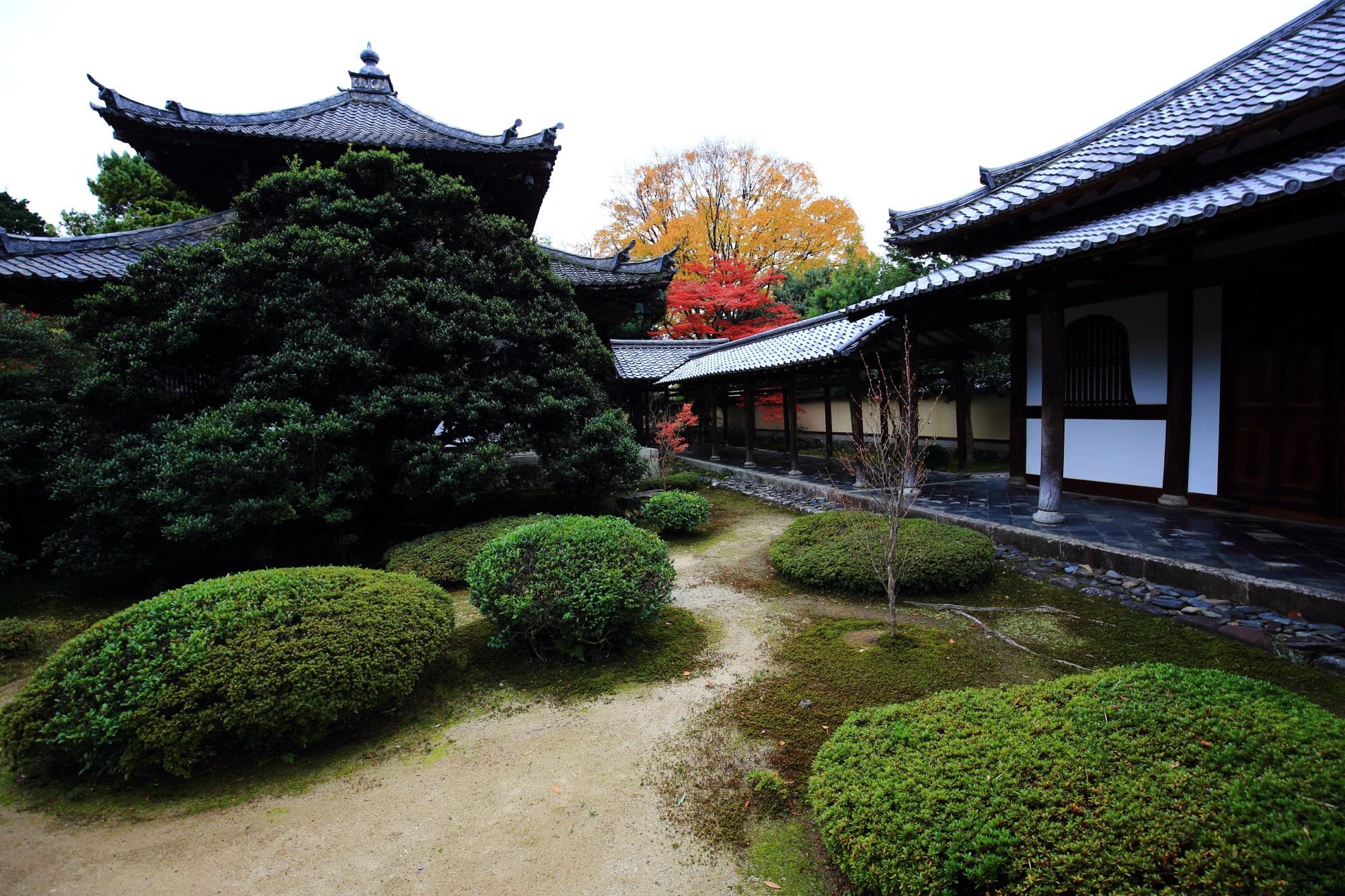 鹿王院の舎利殿と渡廊下と紅葉