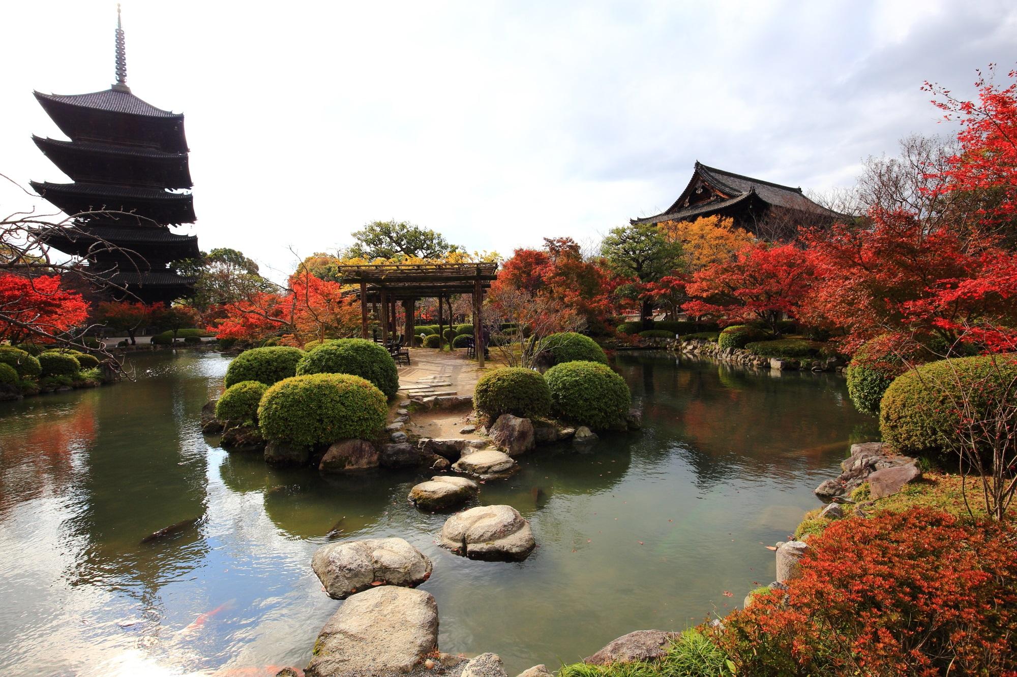 紅葉名所の当為の瓢箪池と五重塔と金堂と見ごろの紅葉