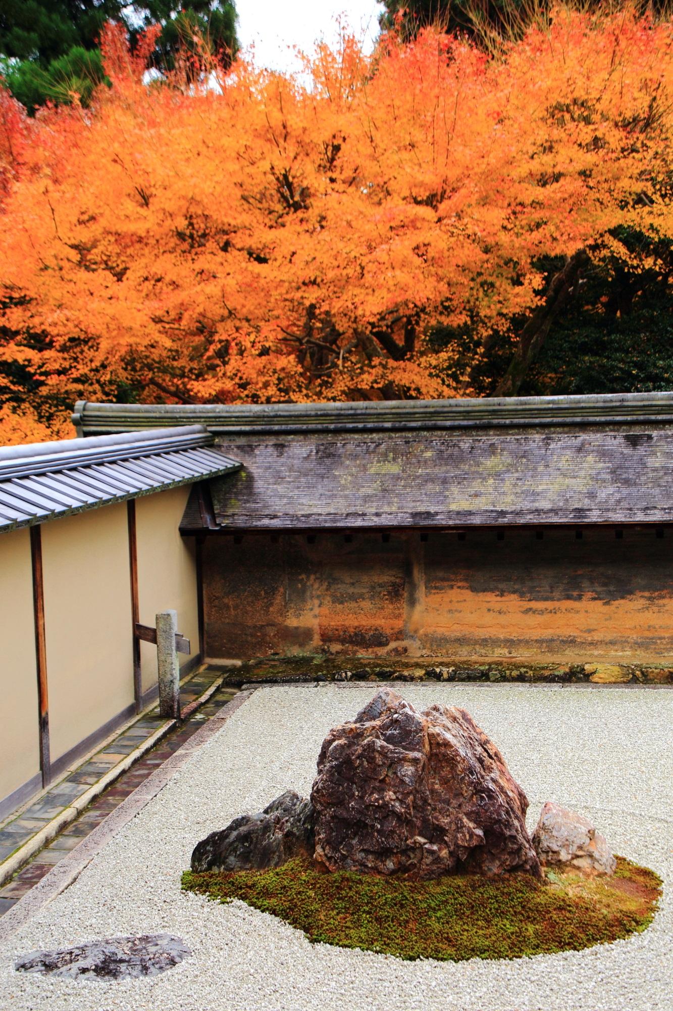 石庭の鮮やかなオレンジの紅葉と岩