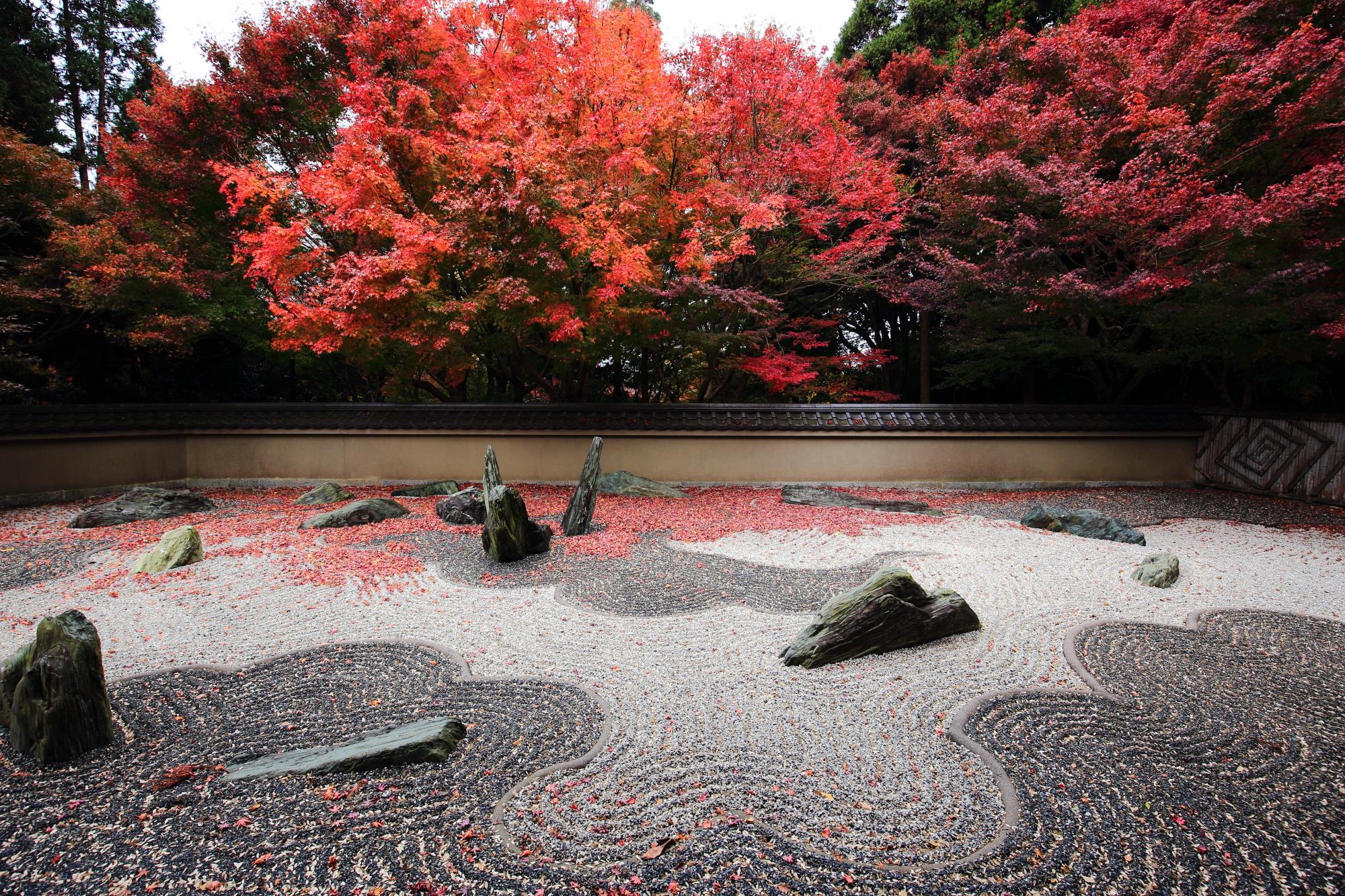 東福寺 龍吟庵(りょうぎんあん)の西庭「龍の庭」の美しい見ごろの紅葉