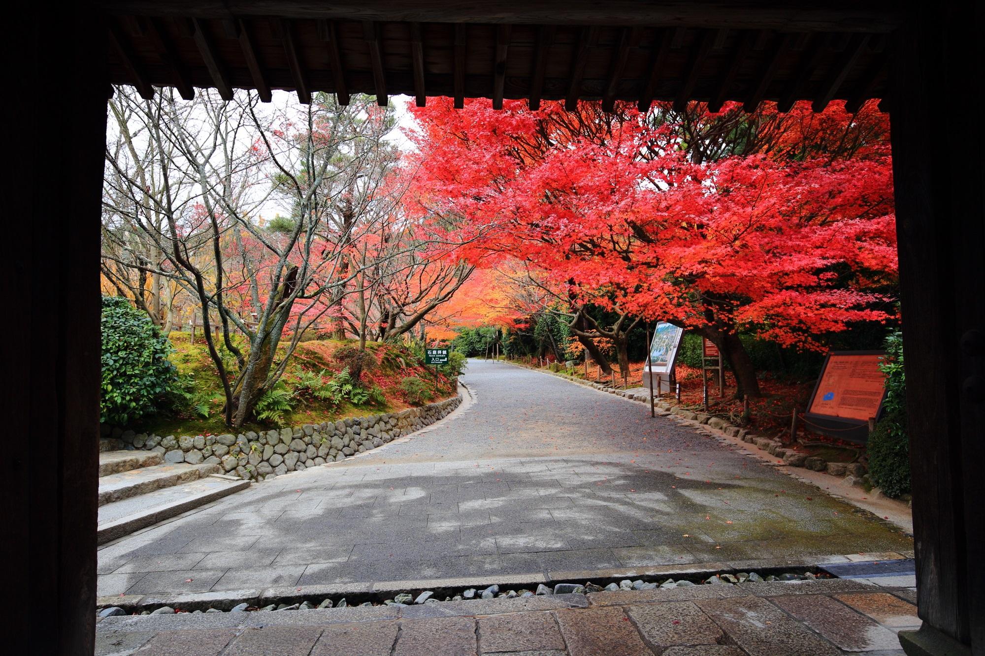 もみじの名所の龍安寺の山門と紅葉