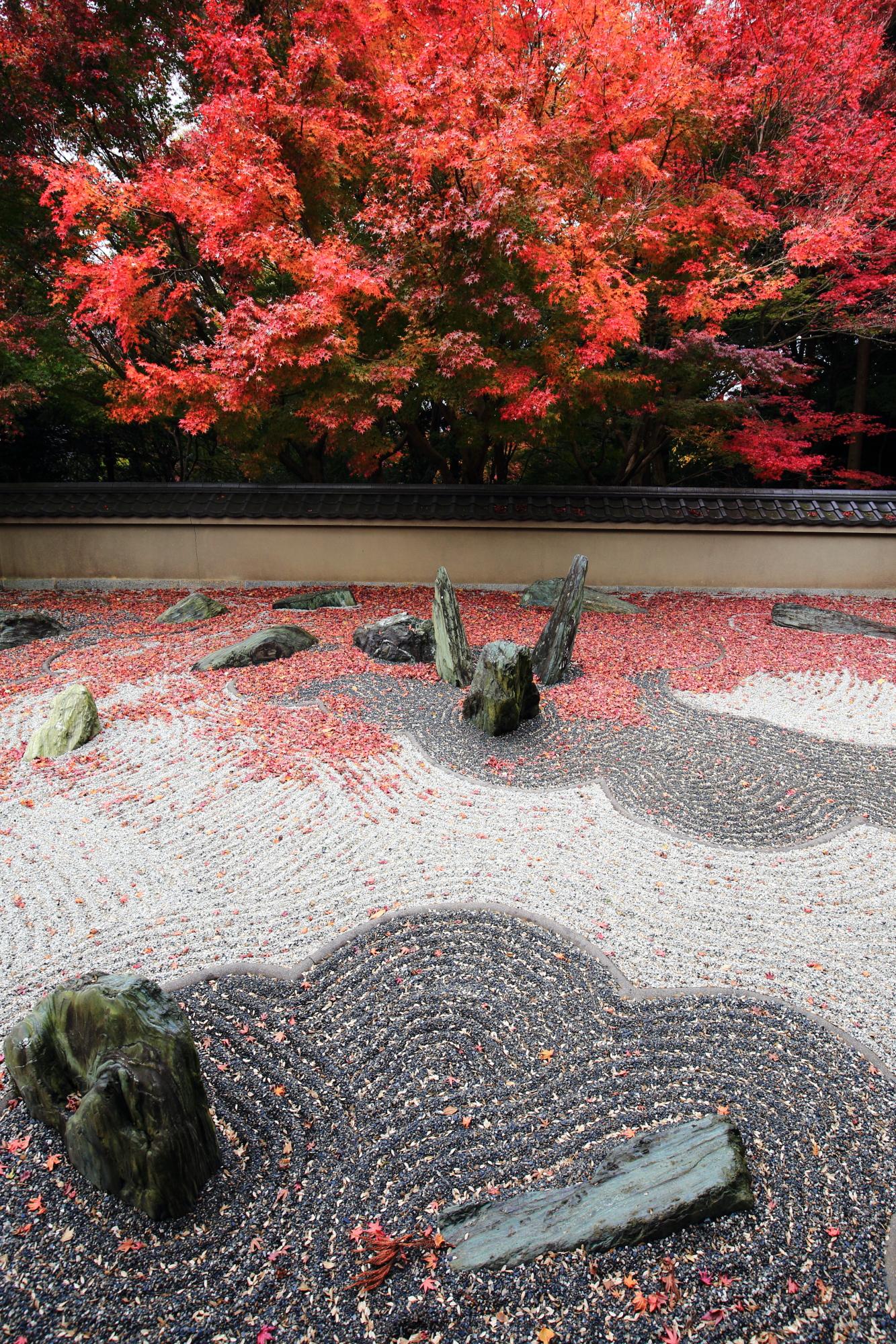 りょうぎんあん 紅葉 しげもりみれい 龍の庭 西庭 龍吟庵 秋