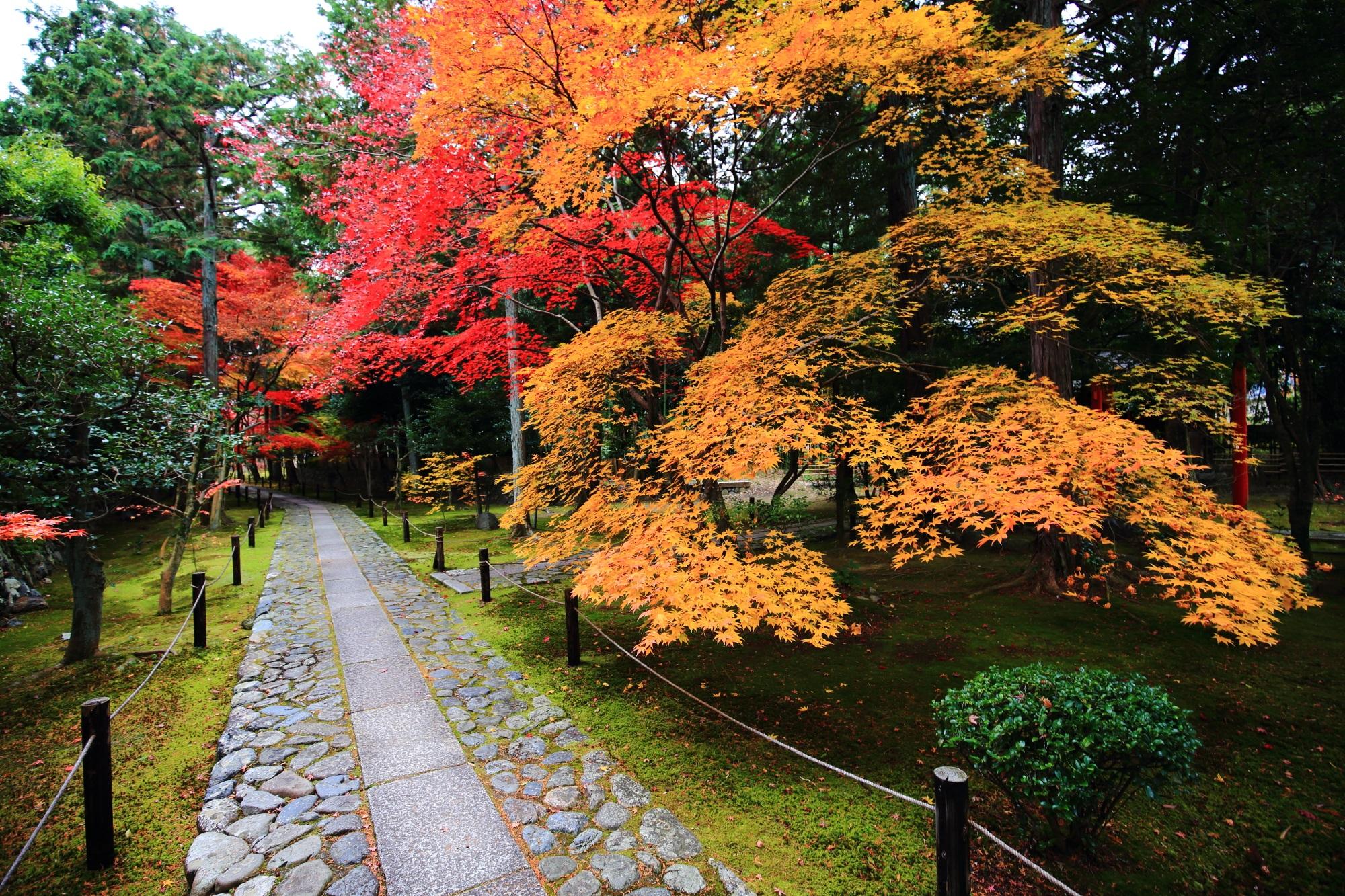 紅葉の穴場の嵐山の鹿王院の美しい紅葉の参道