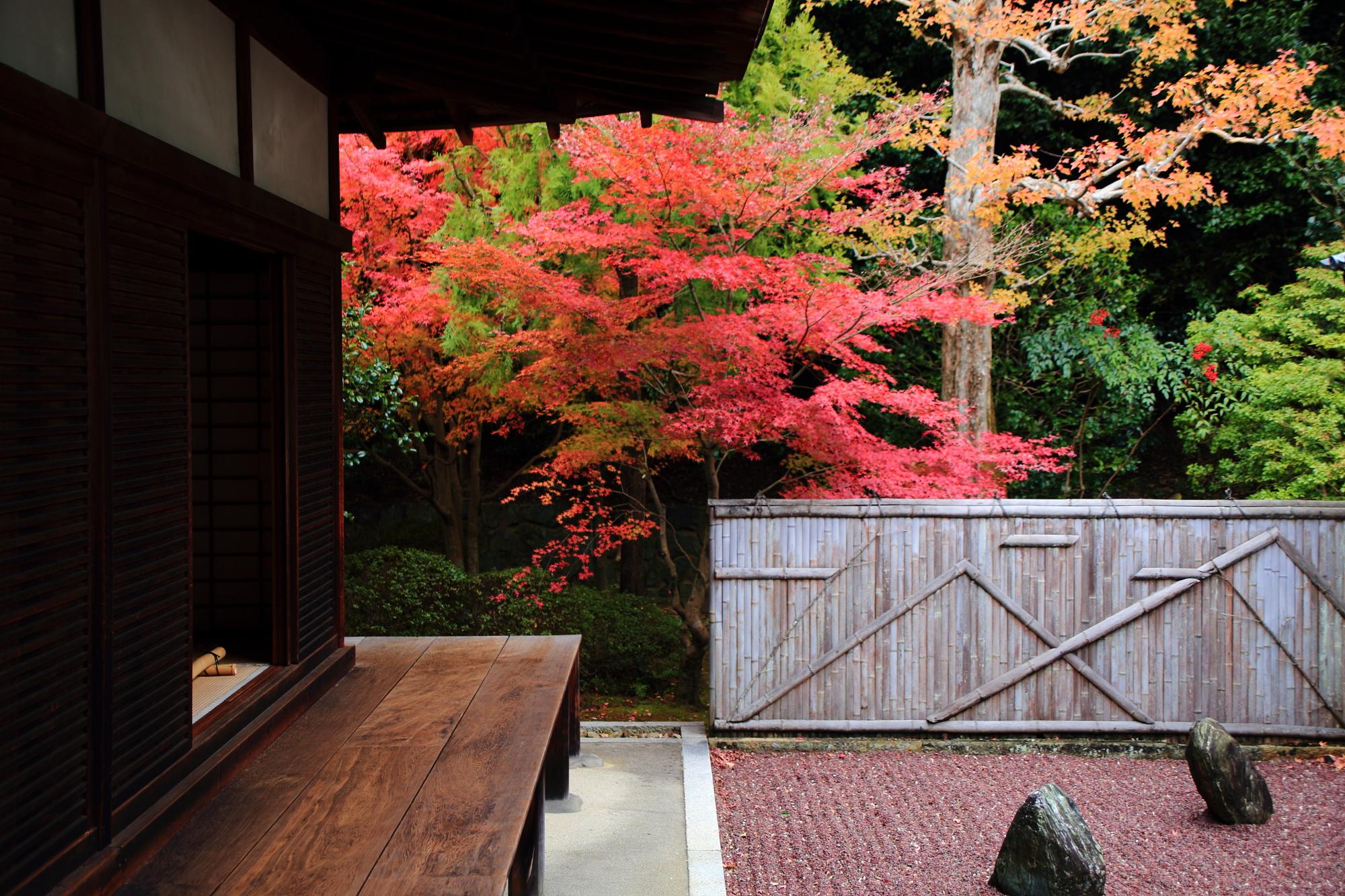 不離の庭 紅葉 見ごろ 龍吟庵 方丈東庭
