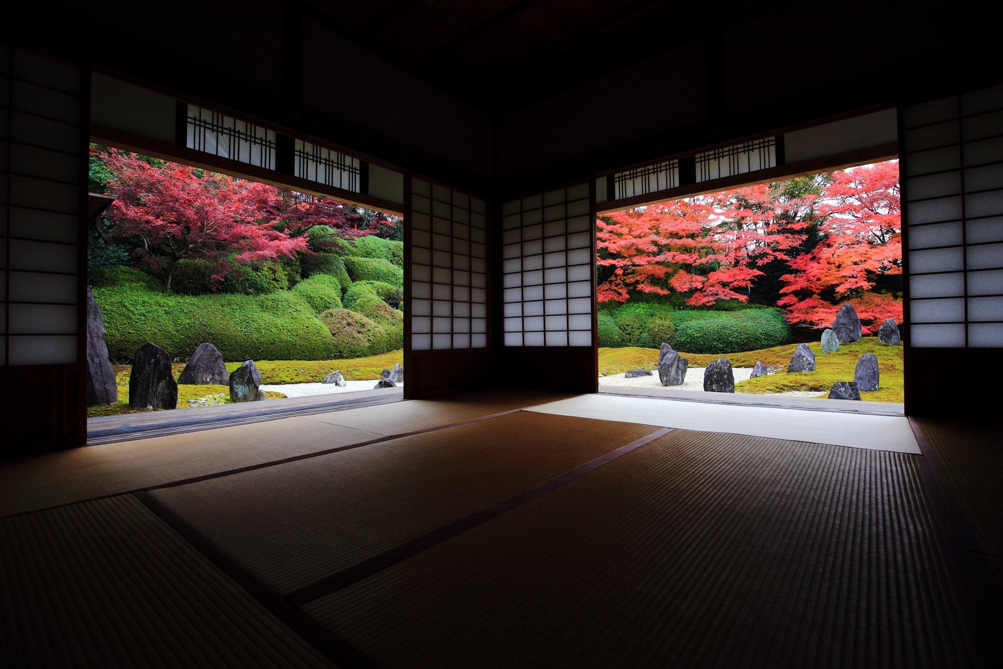 もみじの名所の光明院の茶室奥から眺める波心庭の紅葉