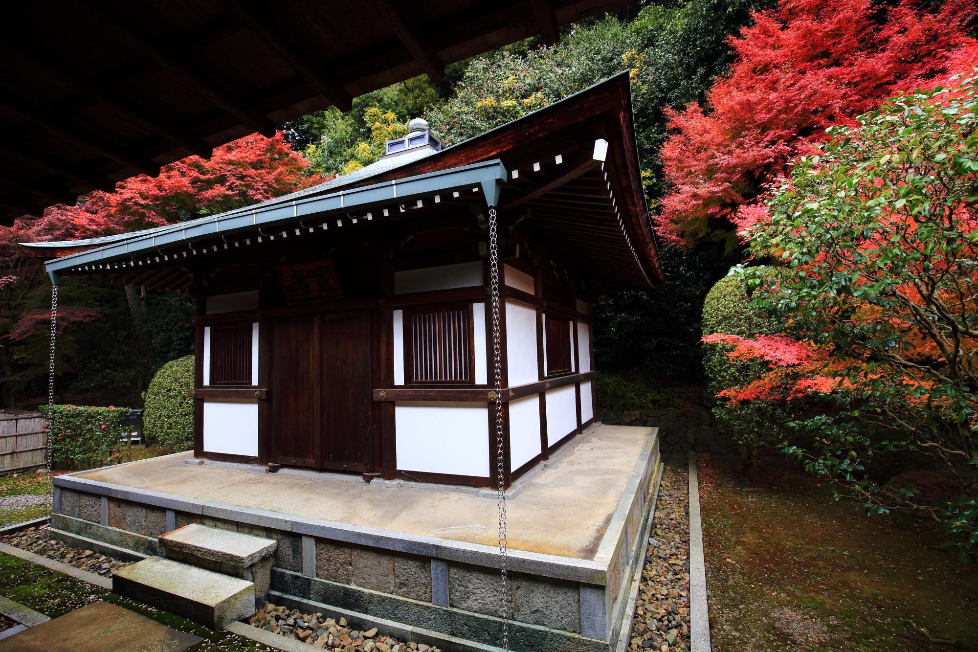 龍吟庵の開山堂と華やかな見ごろの紅葉