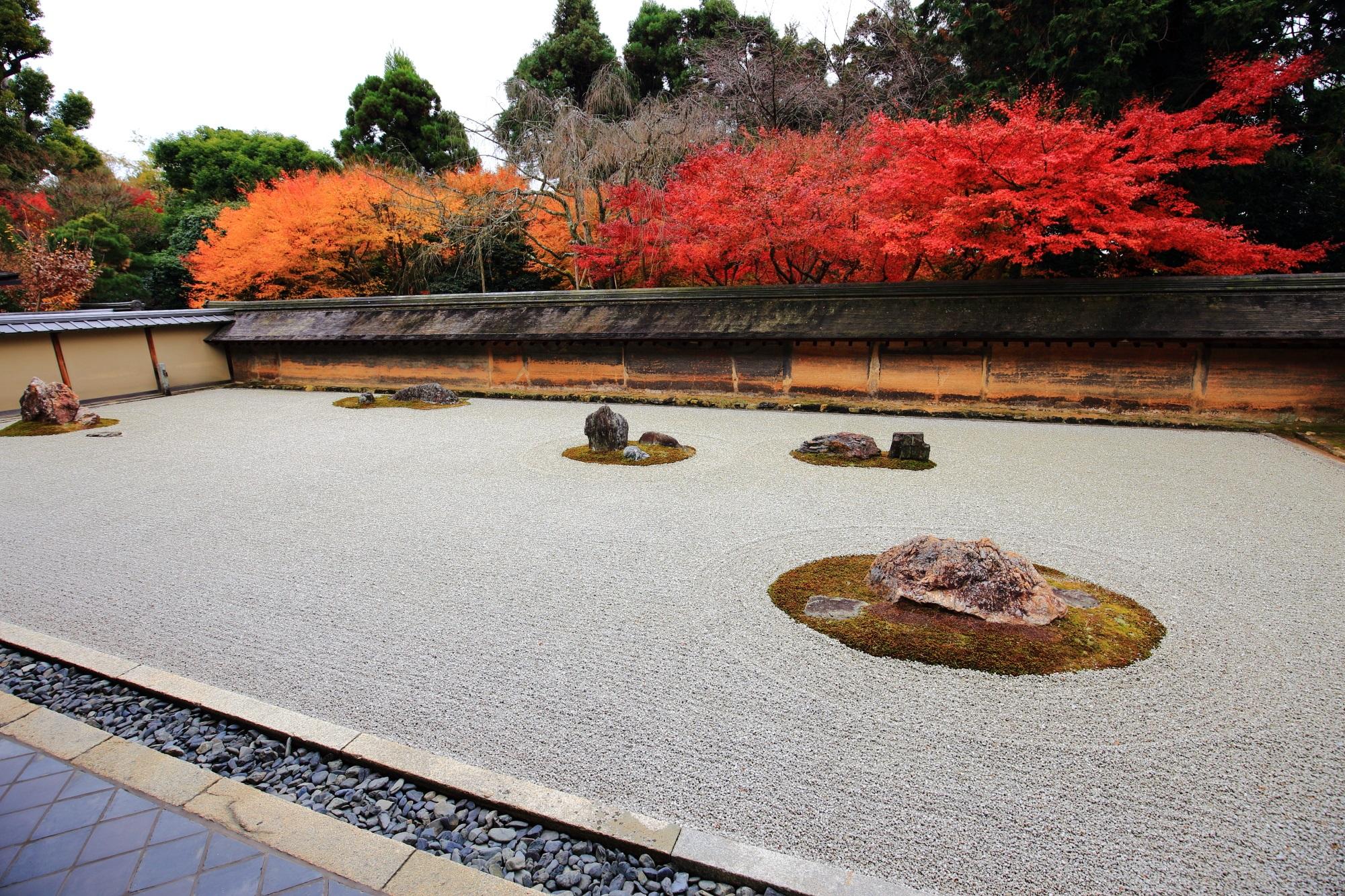龍安寺の石庭の紅葉
