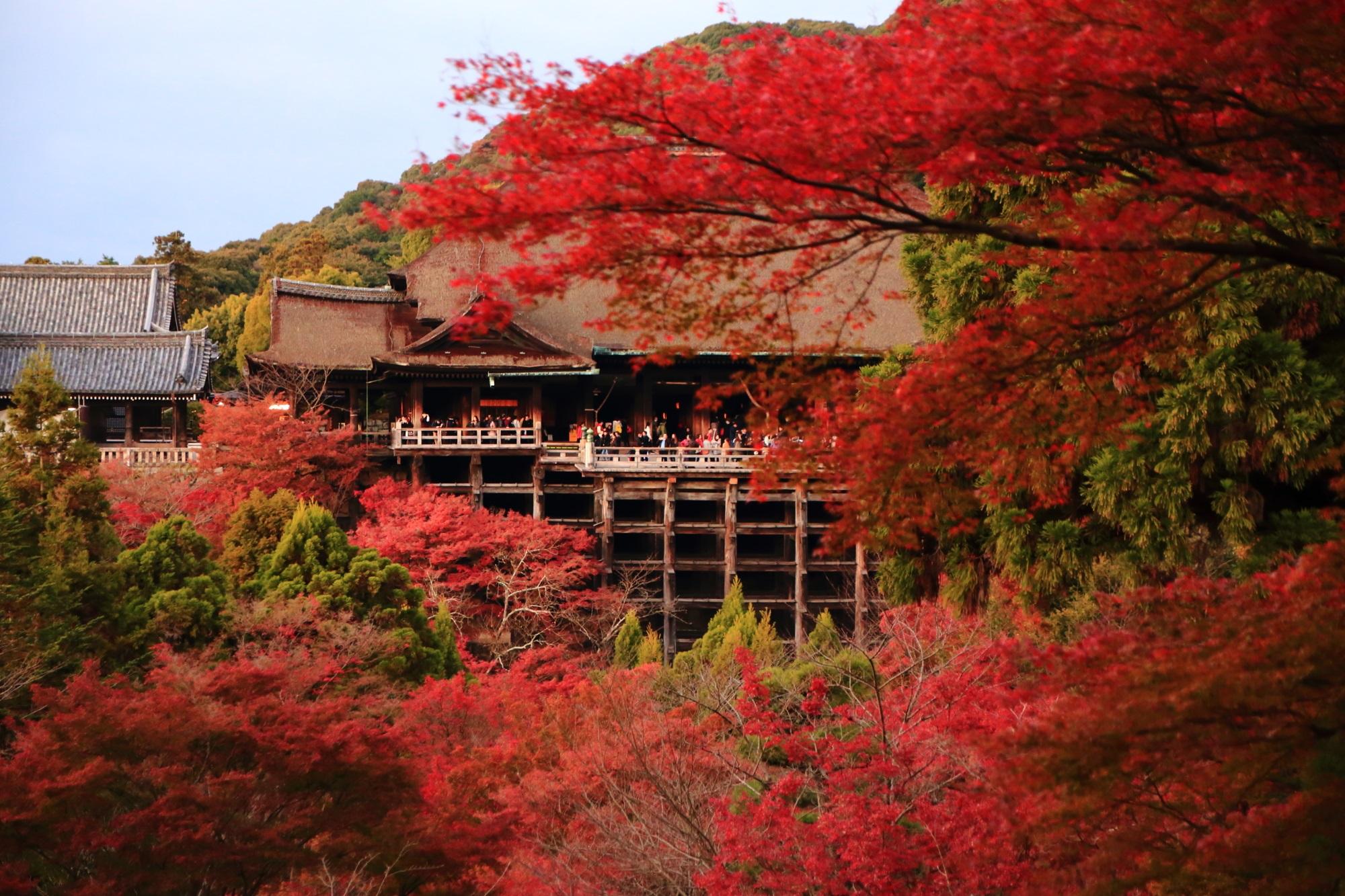 清水寺の夕焼けの美しい紅葉