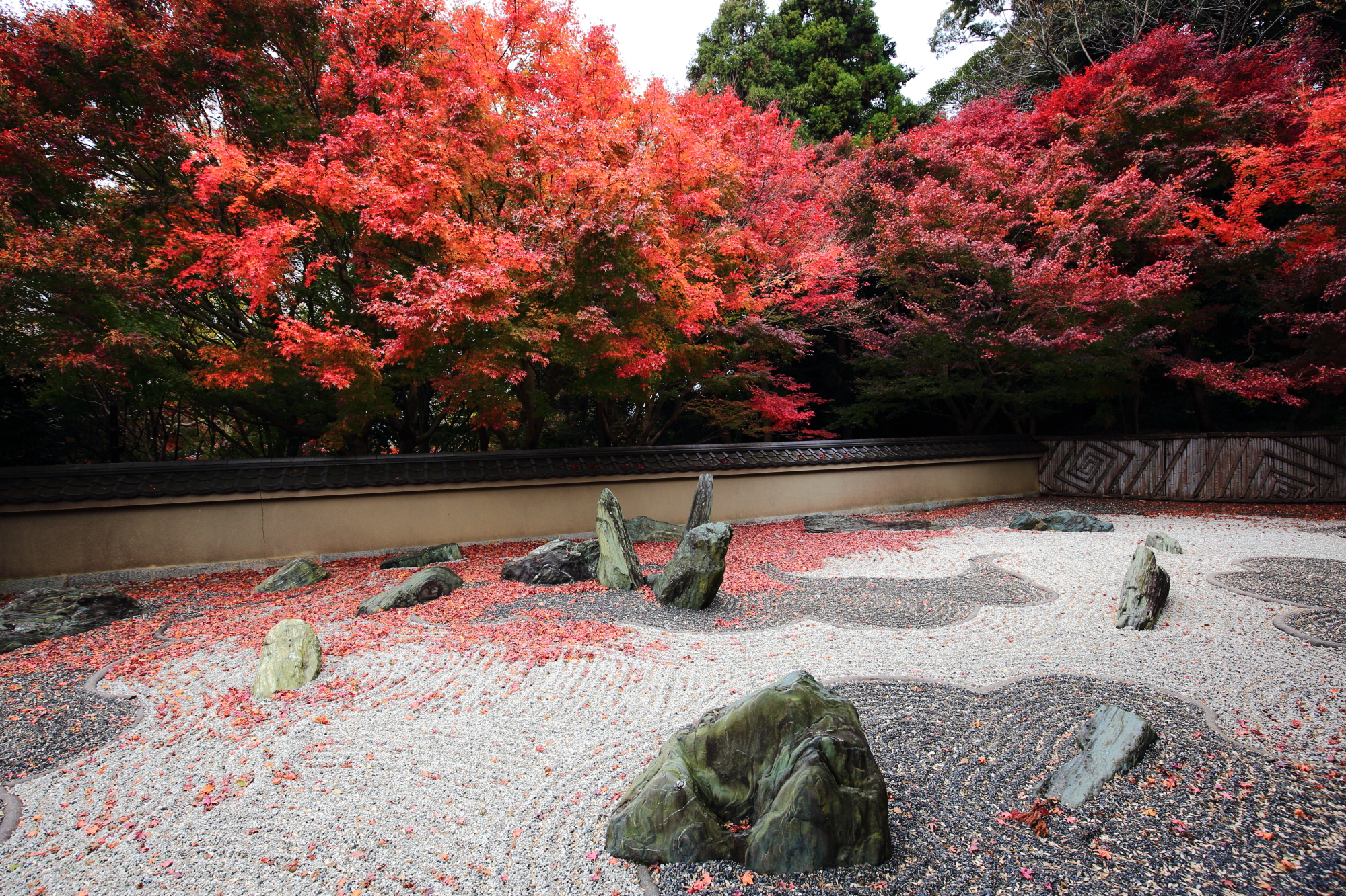 Ryoginan-Temple Kyoto colored leaves 見ごろ 龍の庭 方丈西庭