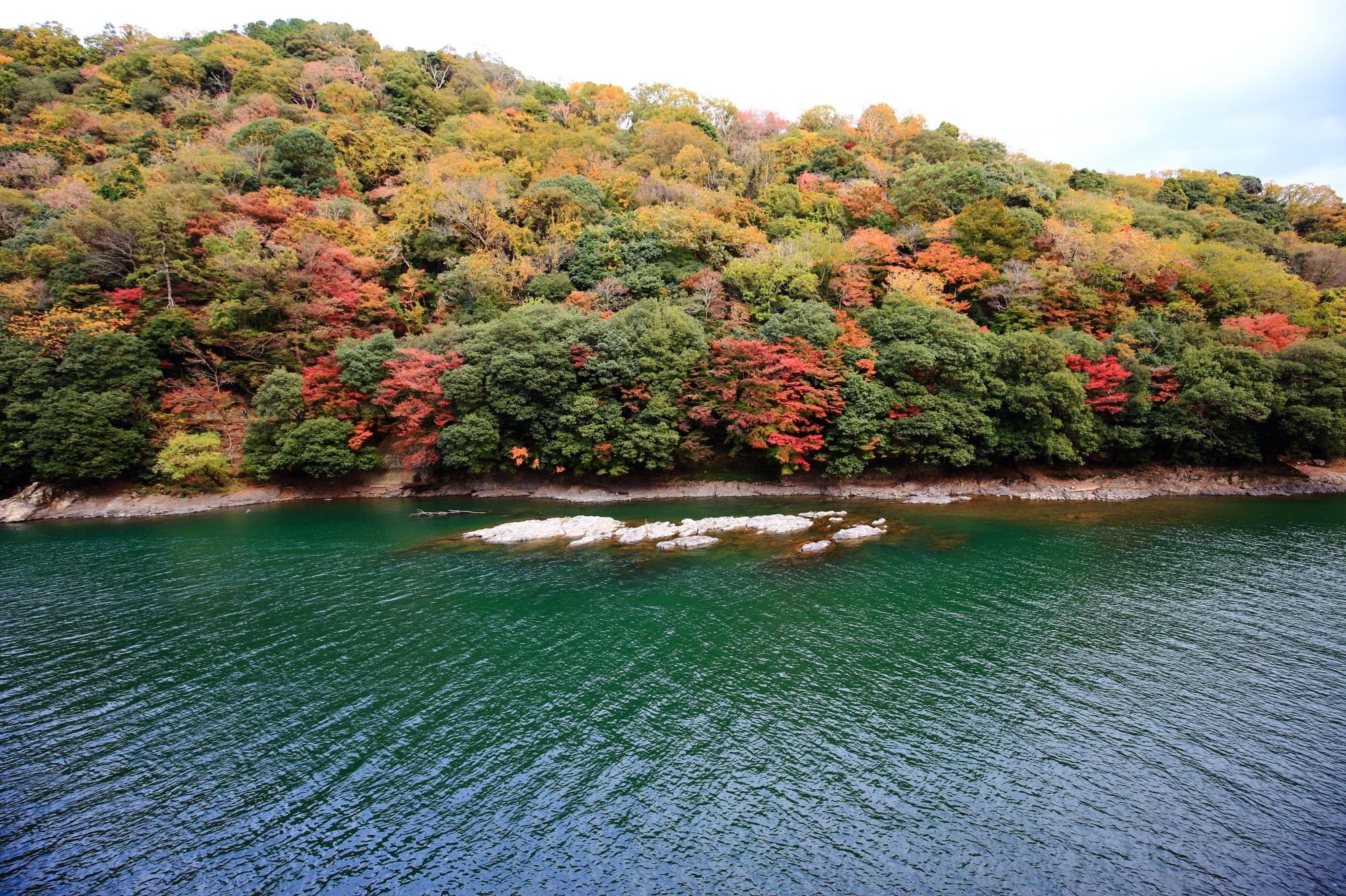 宇治川の色とりどりの紅葉と長閑な流れ