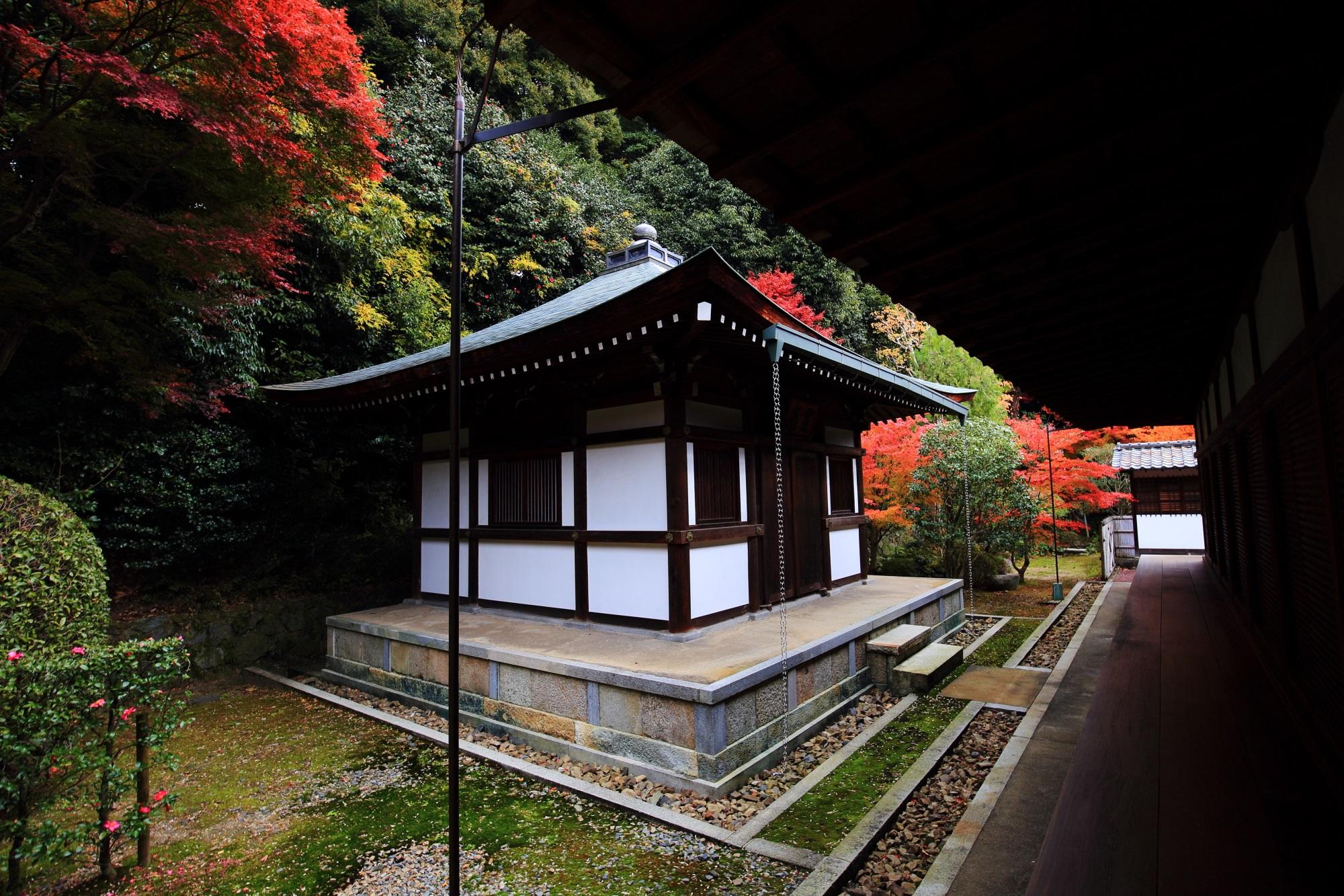 東福寺龍吟庵の開山堂と優美な紅葉