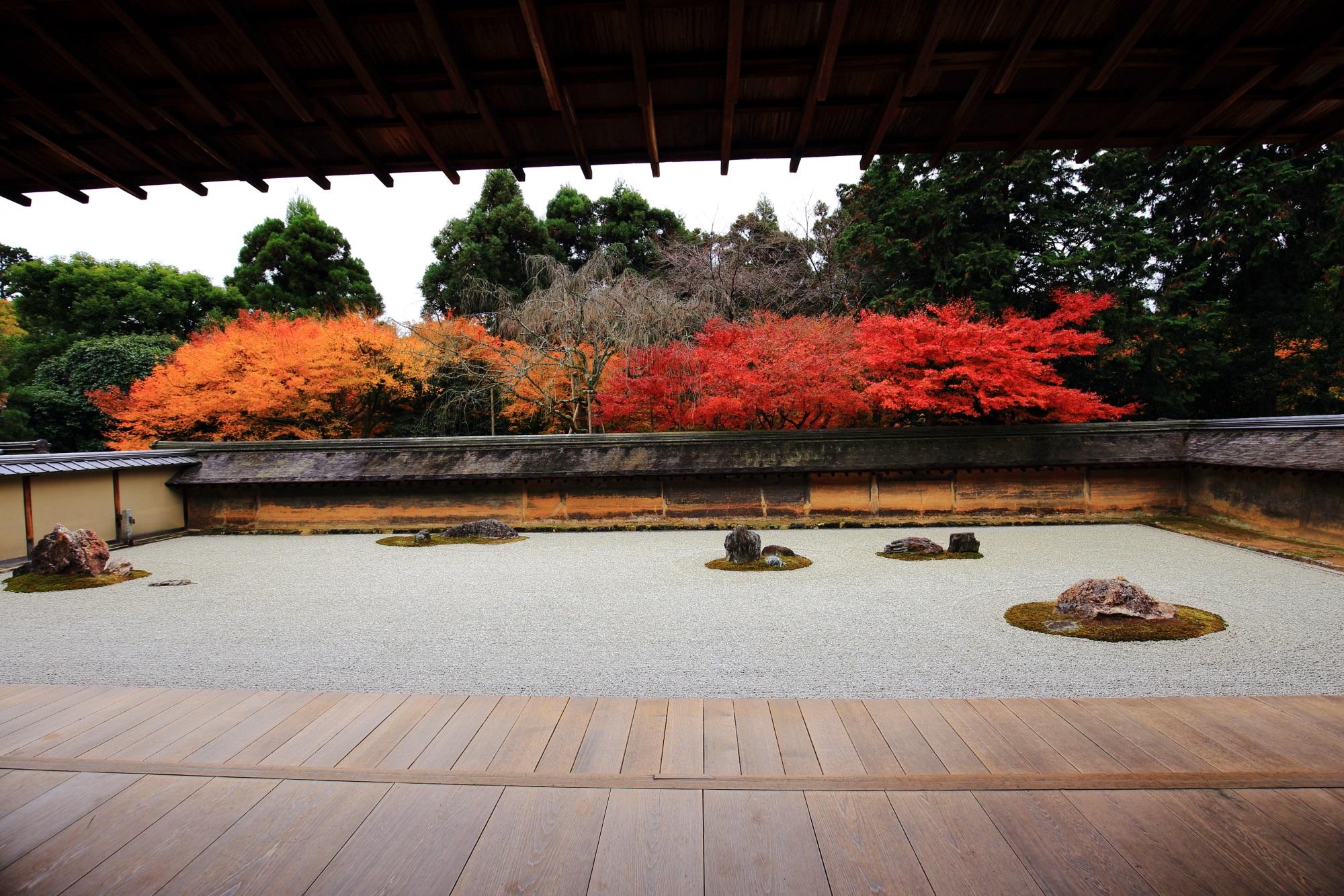 龍安寺の素晴らしい紅葉と情景