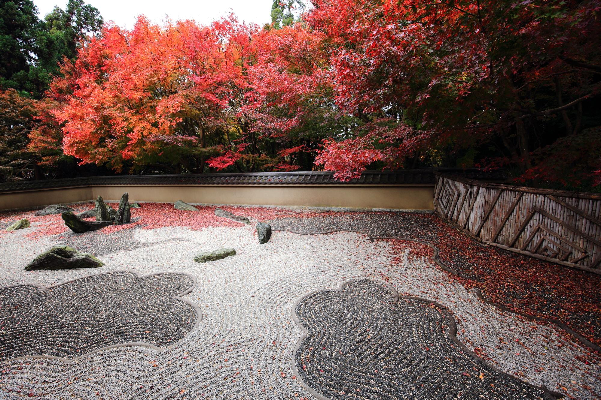 もみじの名所の重森三玲作の龍吟庵の龍の庭の見ごろの紅葉