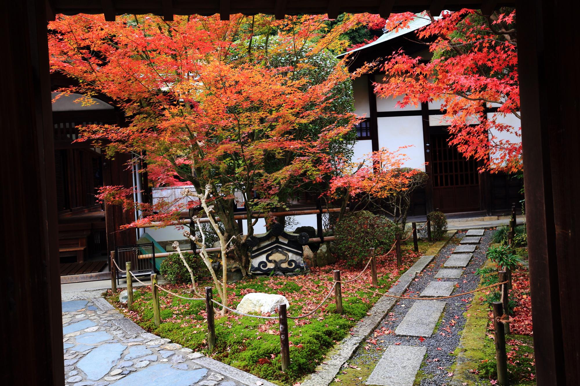 東福寺塔頭の龍吟庵の庫裡前の紅葉