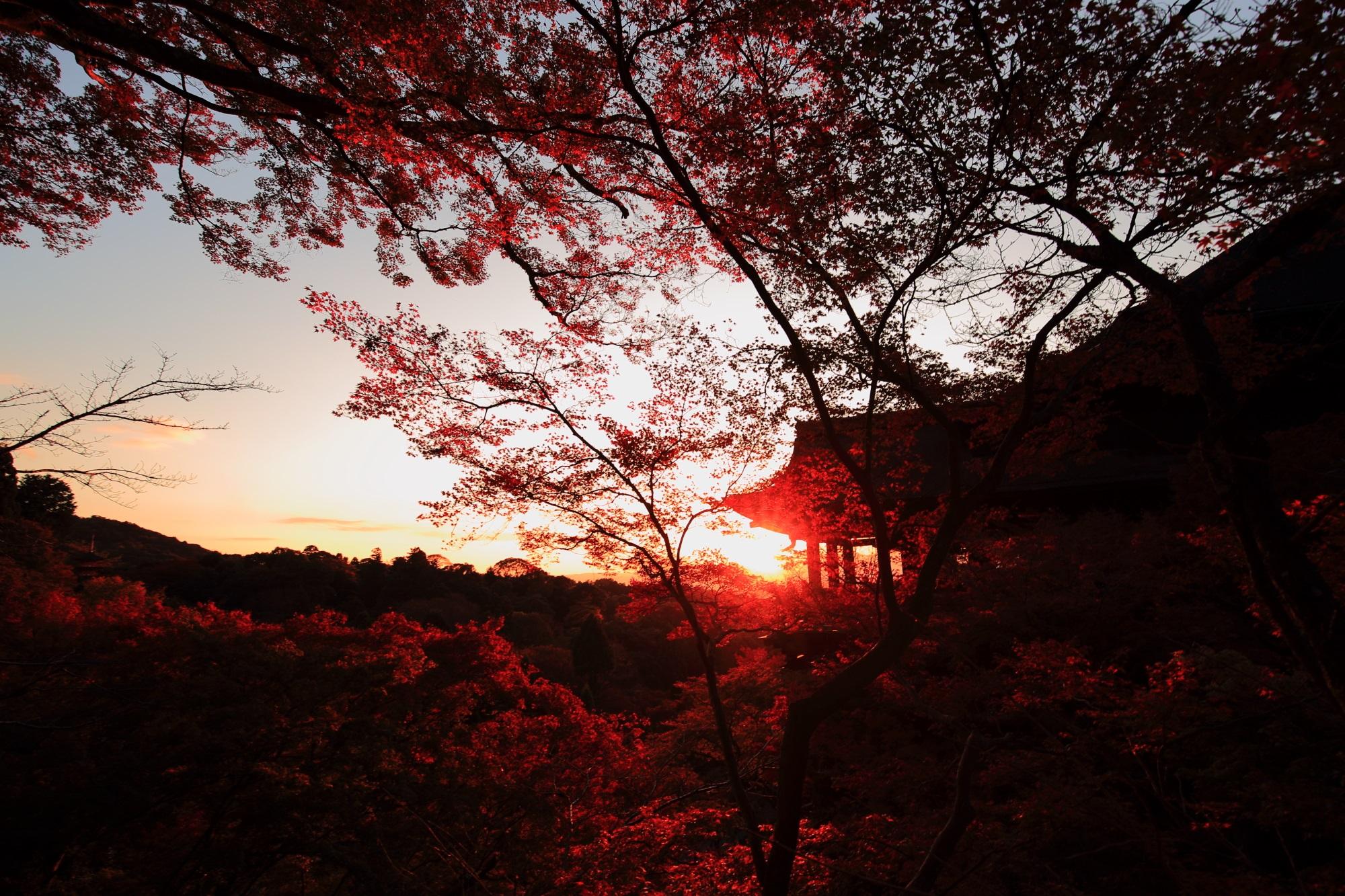 もみじの名所の清水寺の見ごろの紅葉と夕焼け