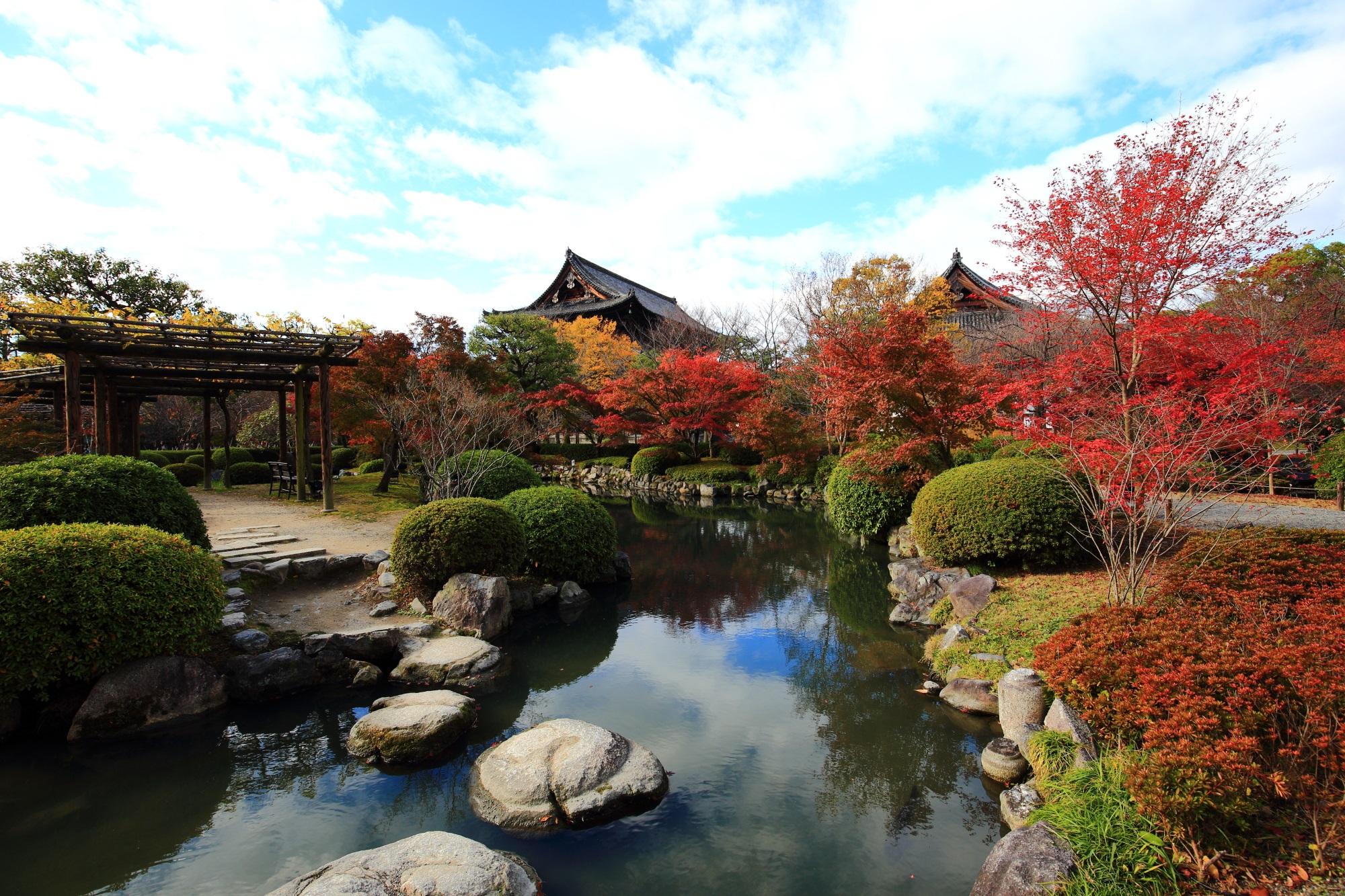 紅葉名所の東寺の優美な紅葉と瓢箪池