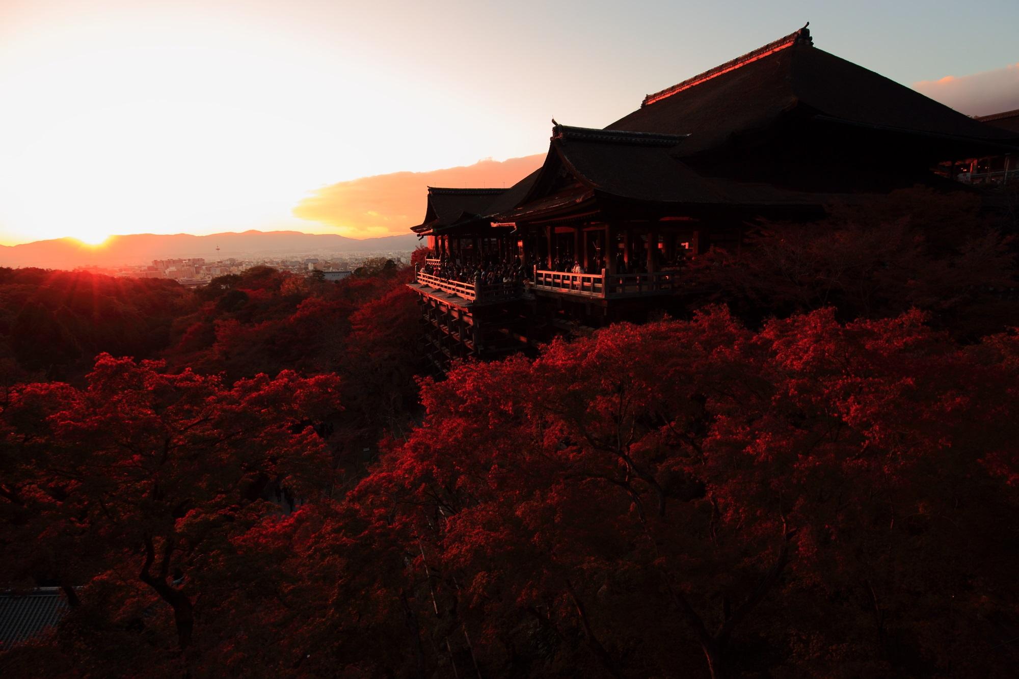 清水寺 紅葉 夕焼けともみじで赤くそまる清水の舞台の絶景