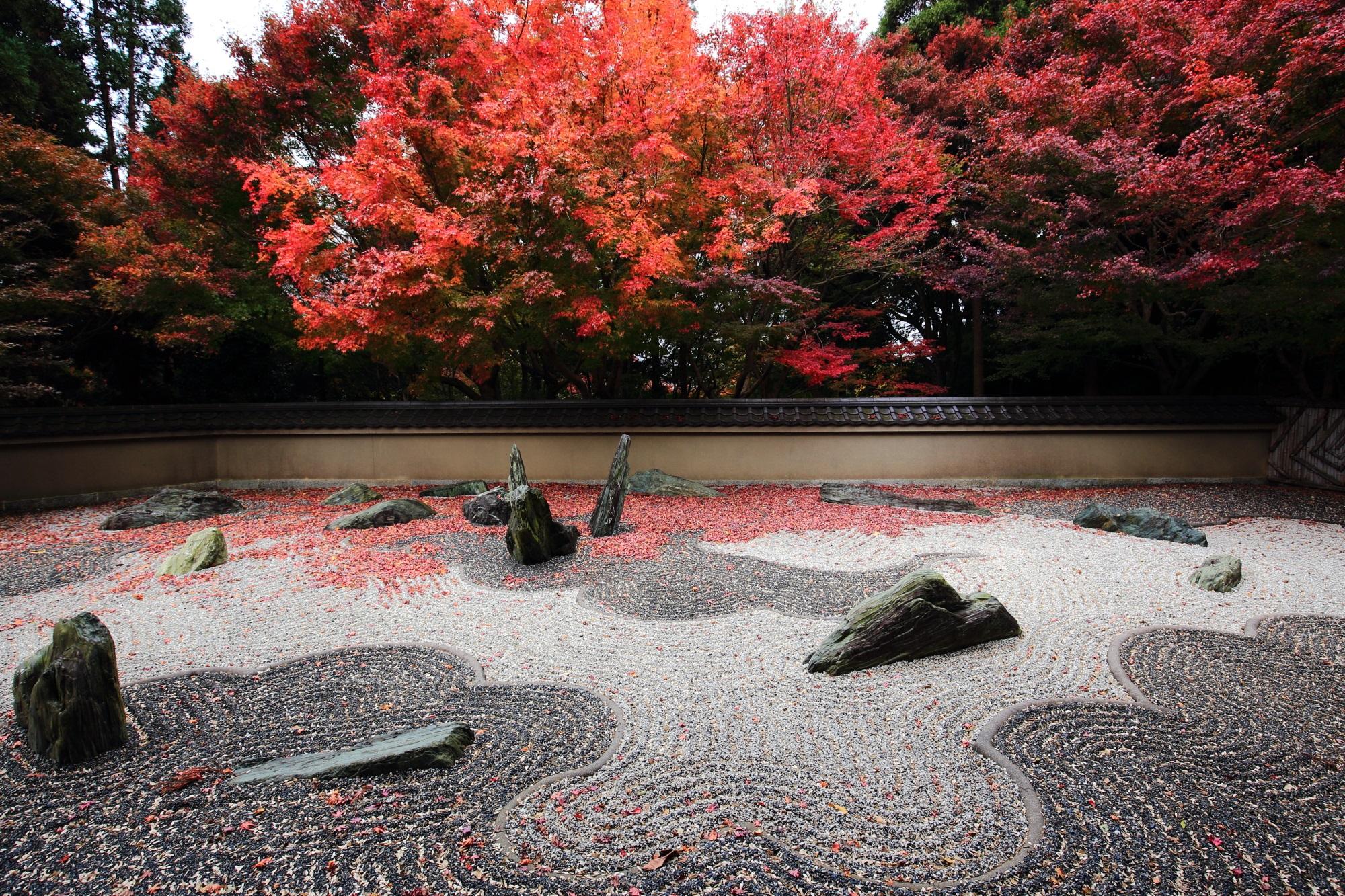 東福寺 龍吟庵(りょうぎんあん) 紅葉 飛び出す龍と紅葉