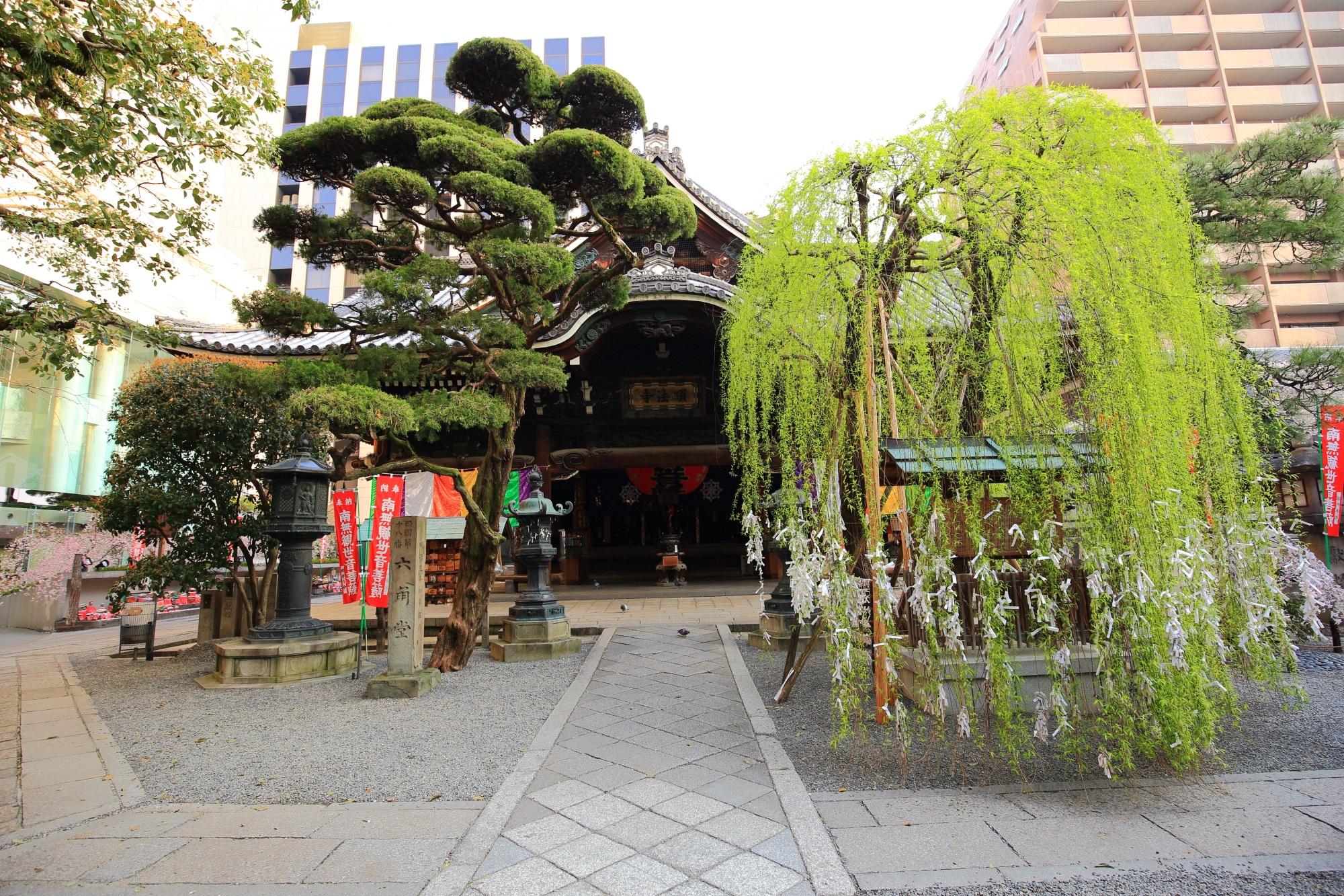 六角堂の本堂と柳
