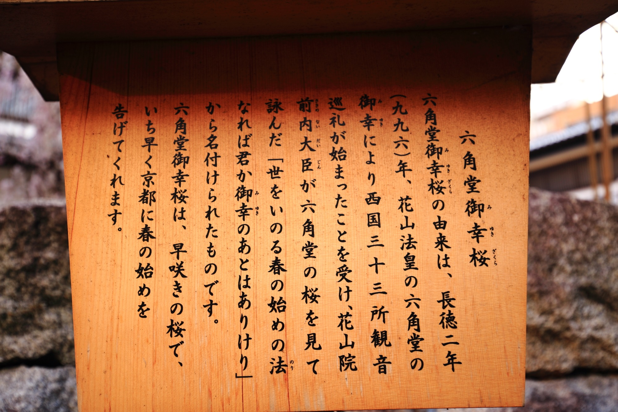 六角堂の御幸桜の説明