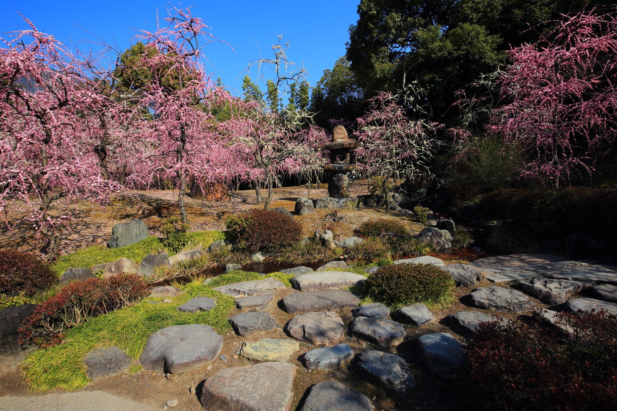 中央に少し変わった形の燈籠が建つ神苑の「春の山」