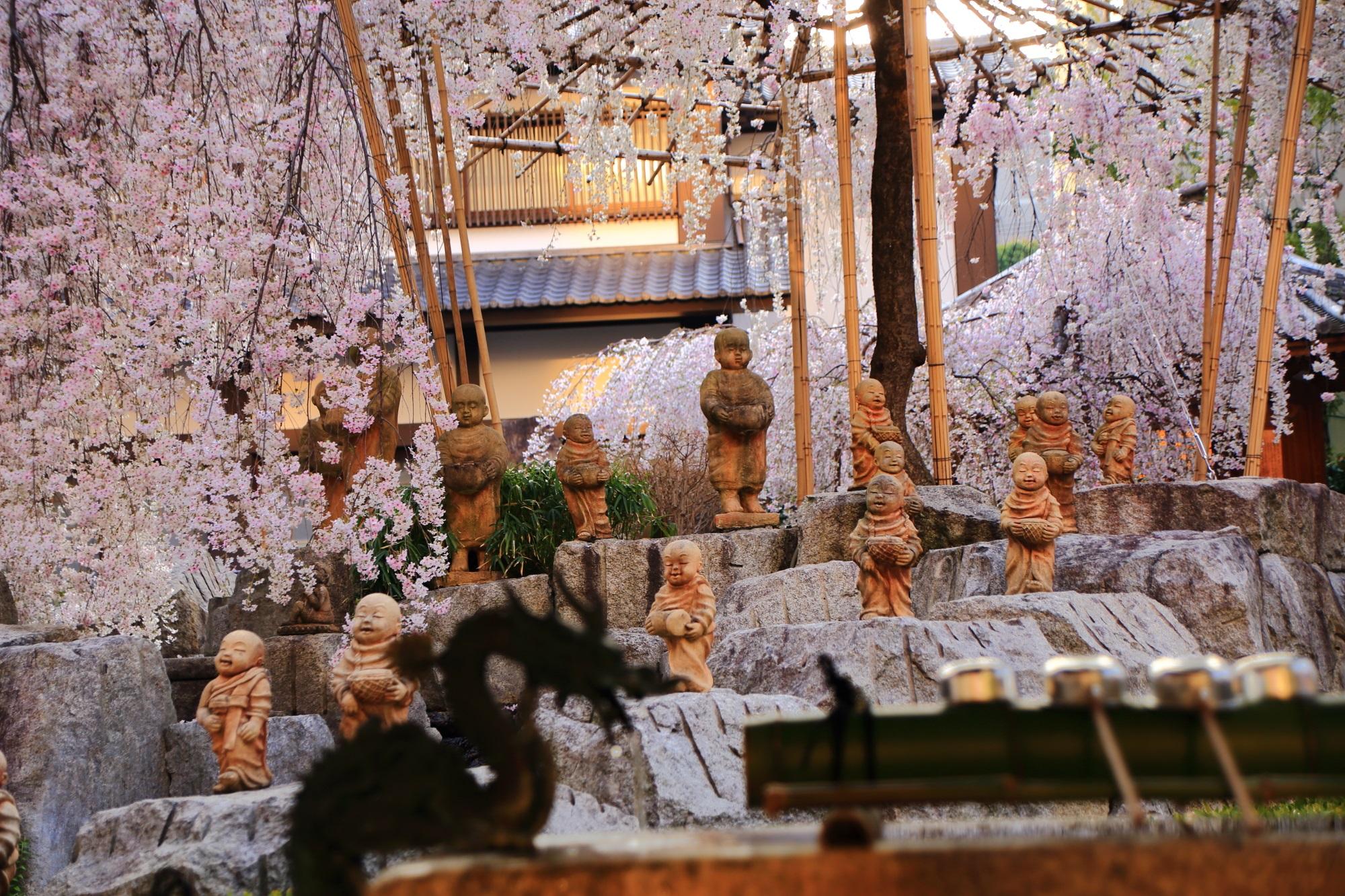 六角堂の十六羅漢と御幸桜