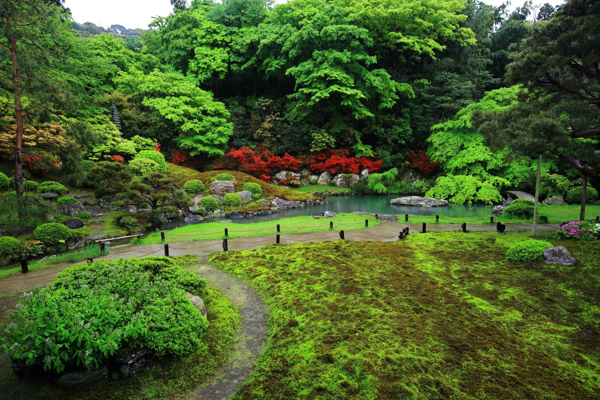 青蓮院の華頂殿から眺めたツツジと新緑の相阿弥の庭