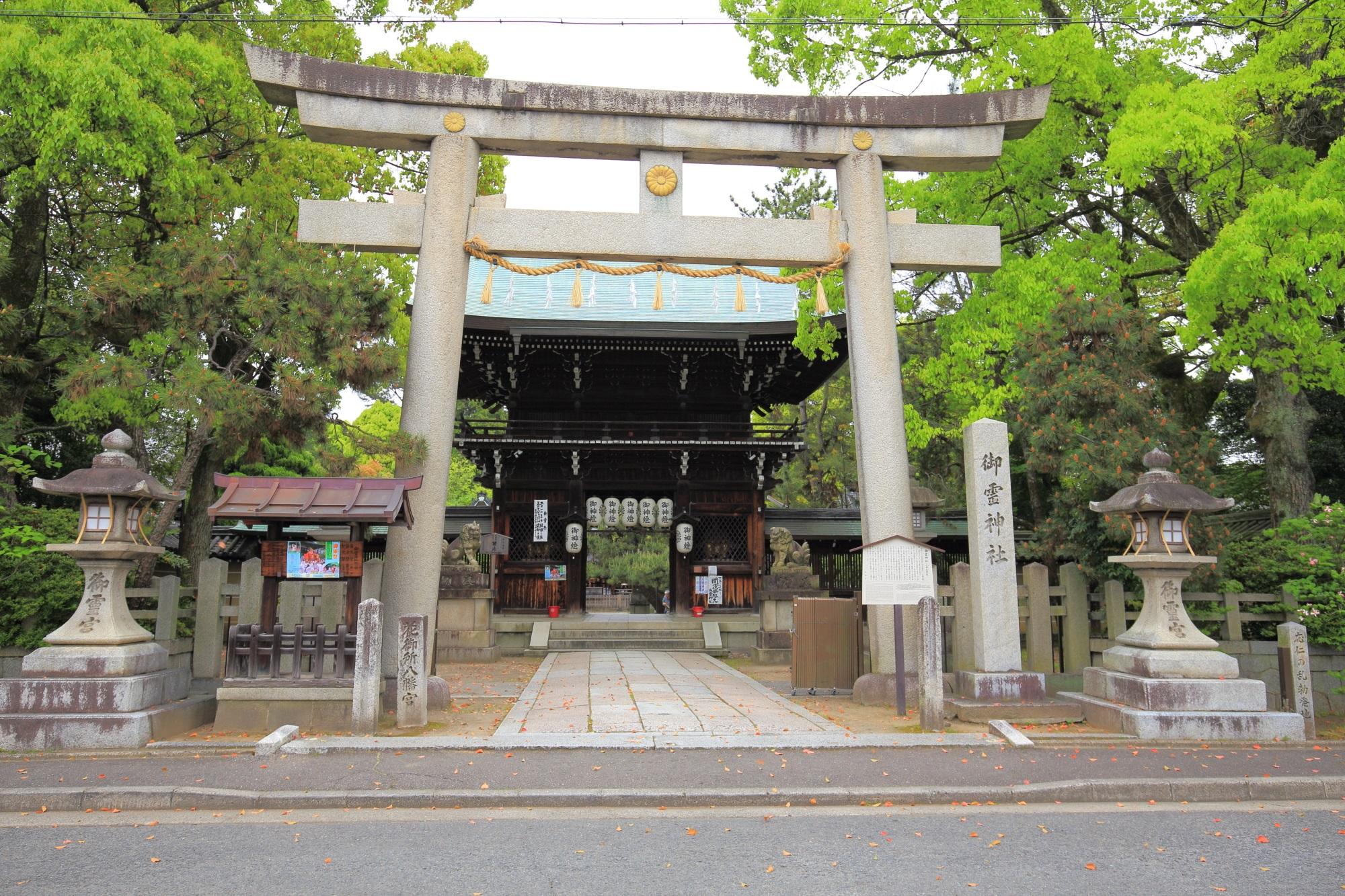 上御霊神社の新緑につつまれた石の鳥居