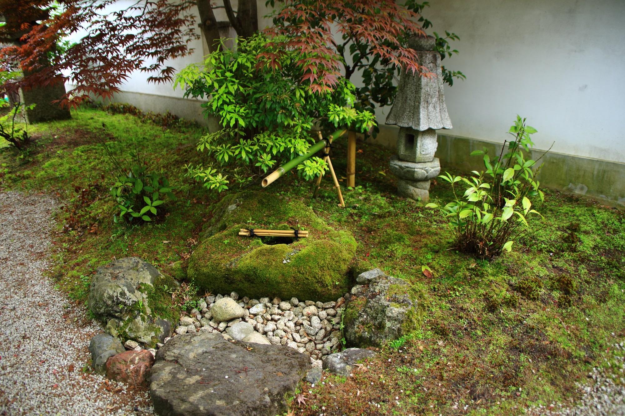 本満寺の風情ある手水鉢と灯籠