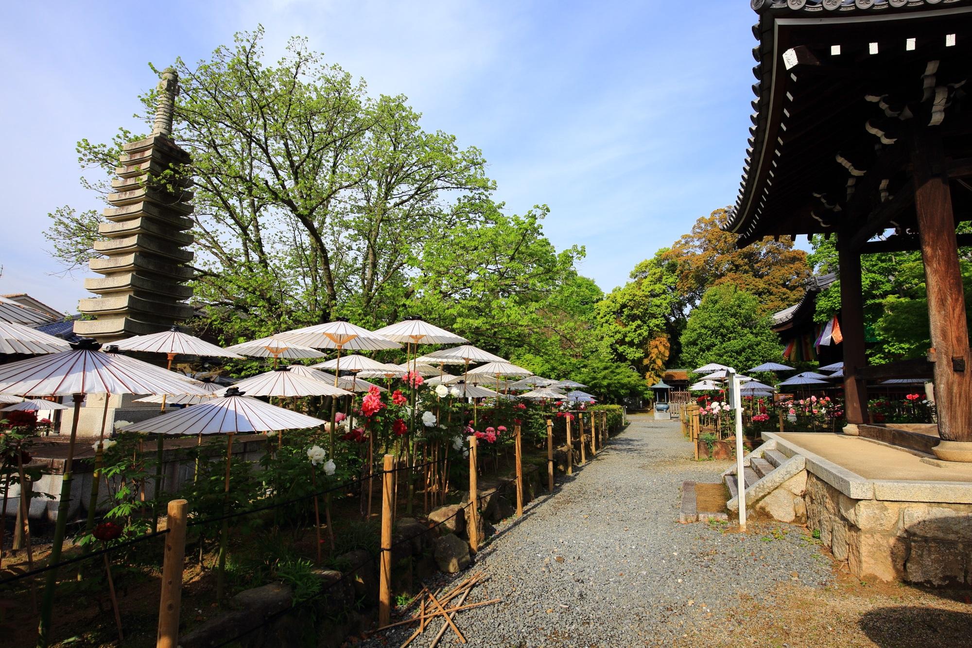 街中にあるも境内には自然がいっぱいの乙訓寺