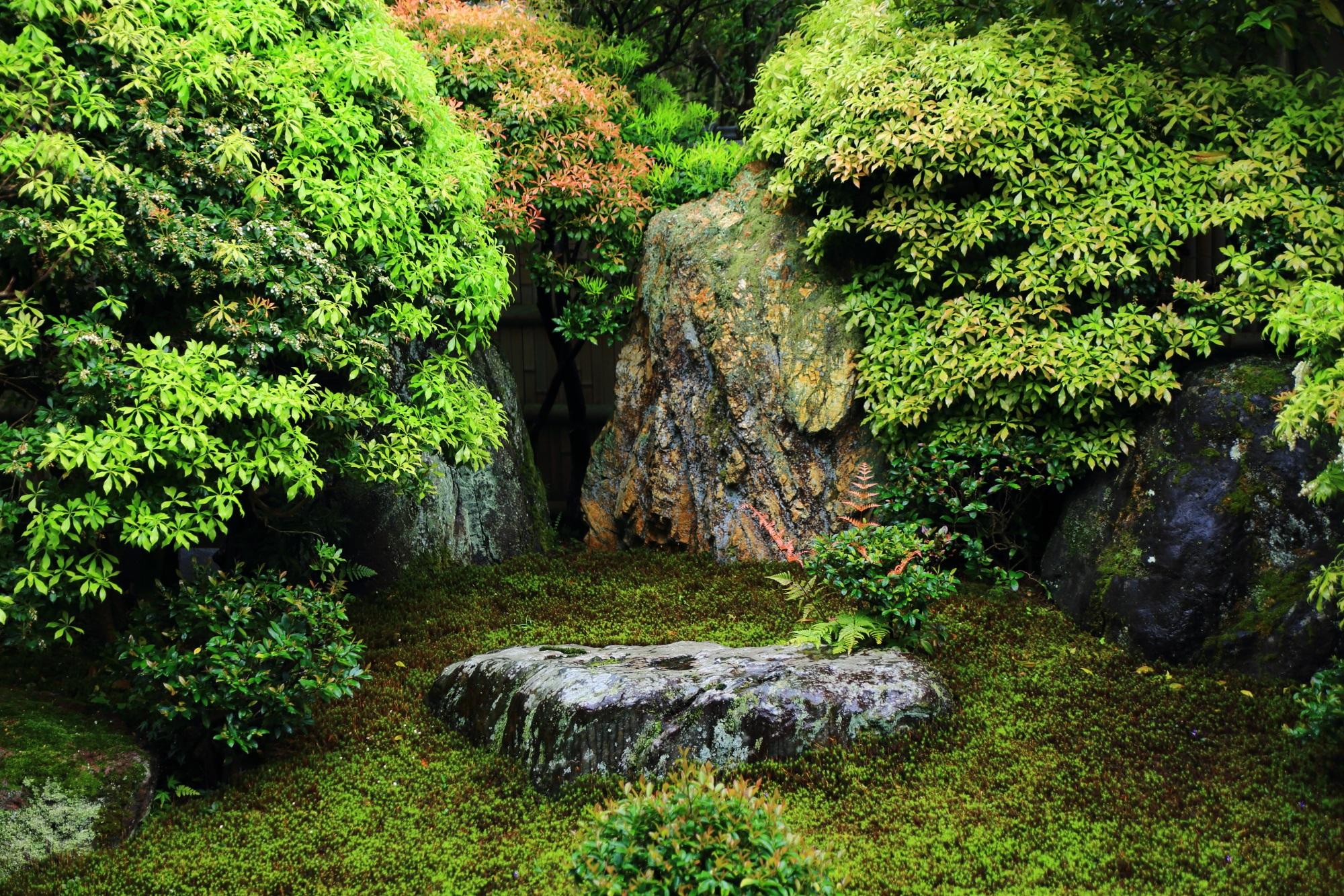 阿吽庭の力強い岩をつつむ多様な緑