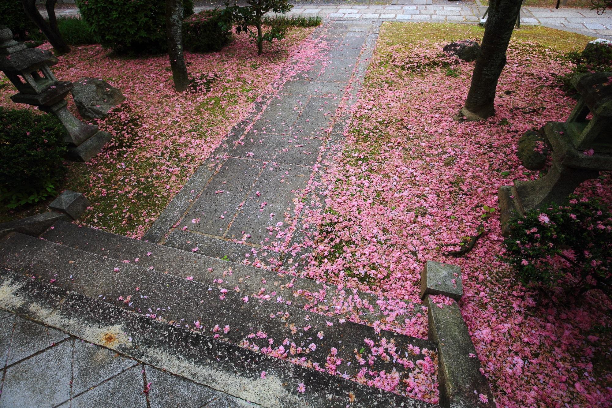 参道にも溢れ出すピンクの花びら