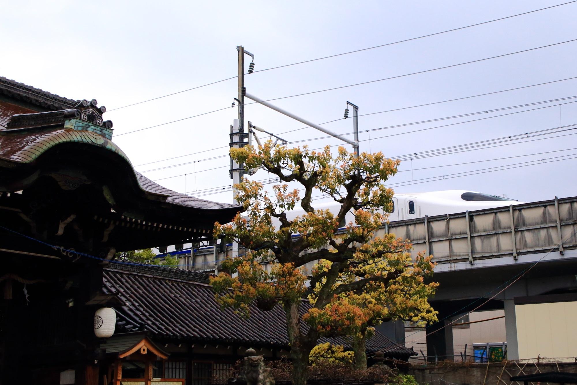 六孫王神社から見える新幹線