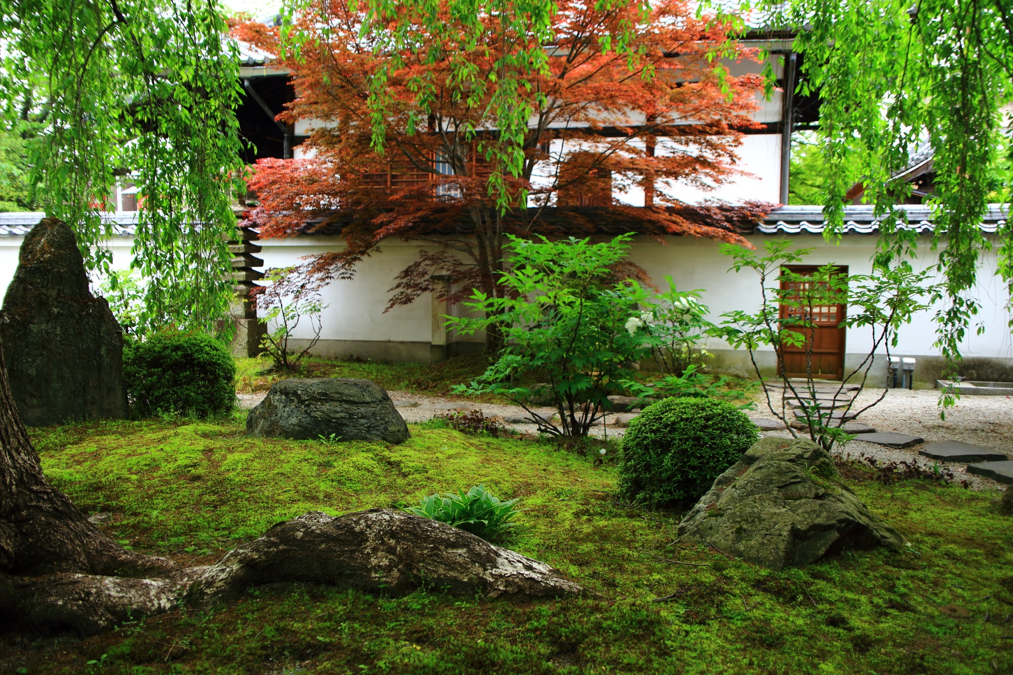 本満寺(ほんまんじ)の苔と新緑