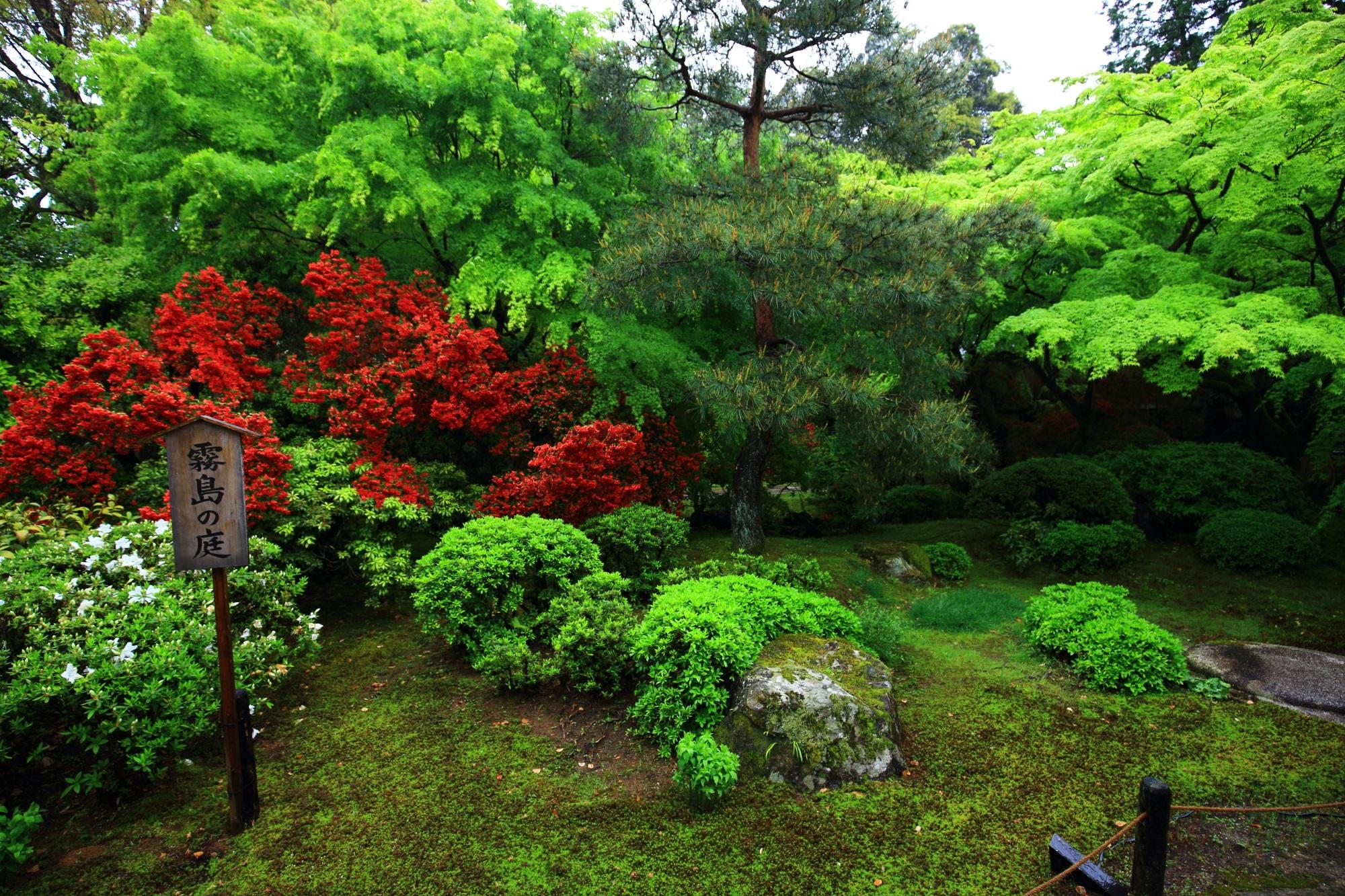 キリシマツツジがいっぱいなため「霧島の庭」と呼ばれる庭園